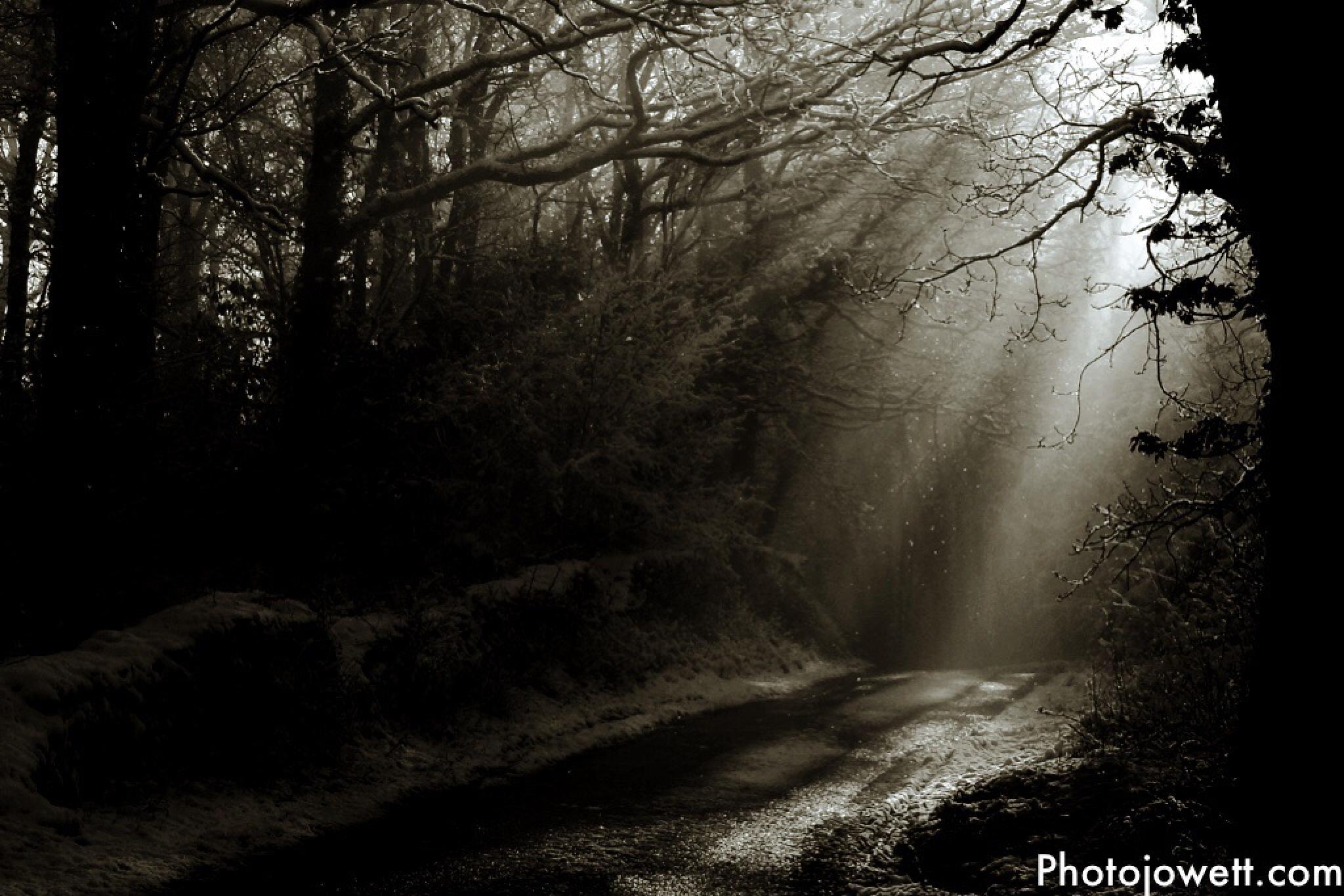 Ray of Hope by grahamjowett