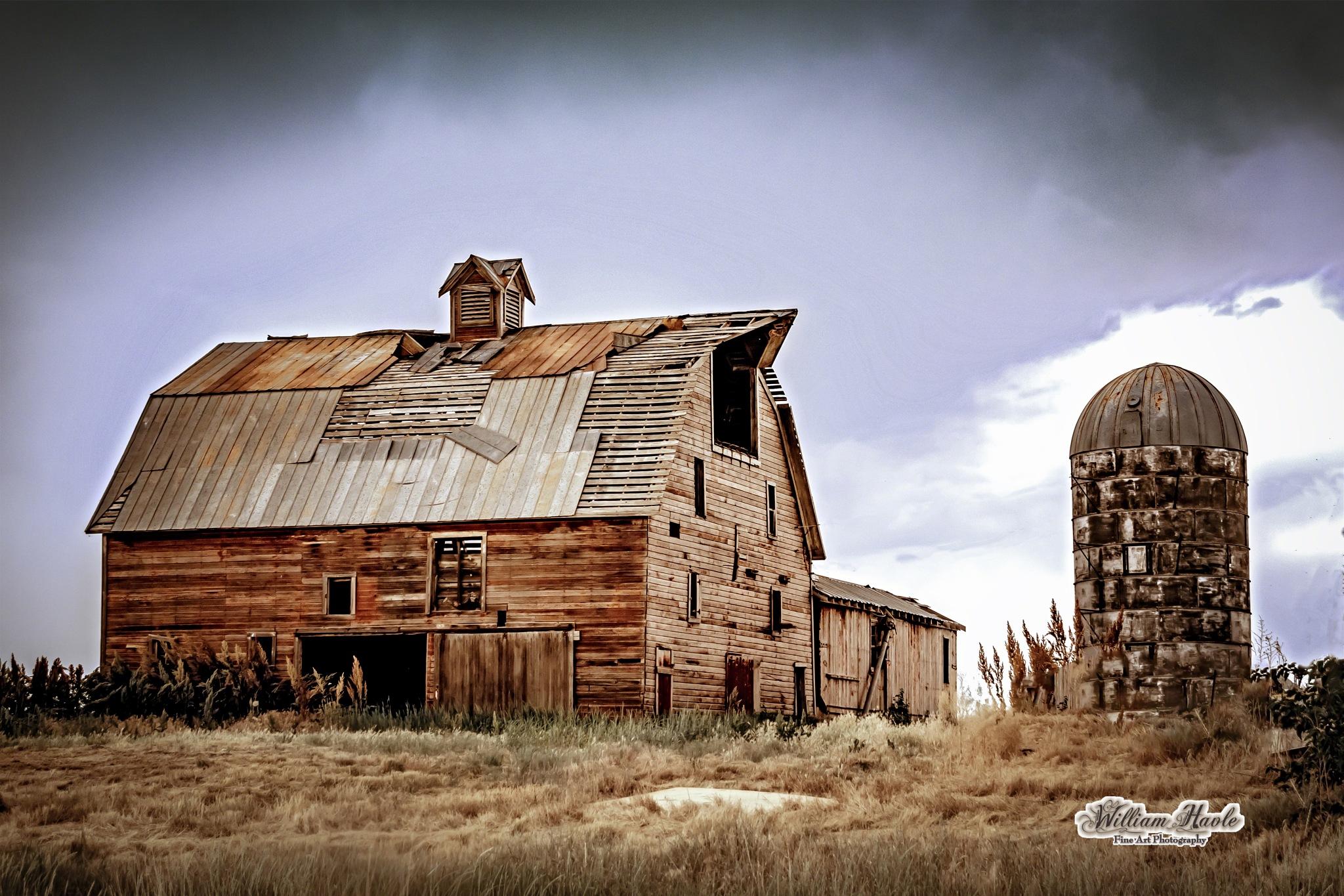Colorado Silo Barn by Bill Havle