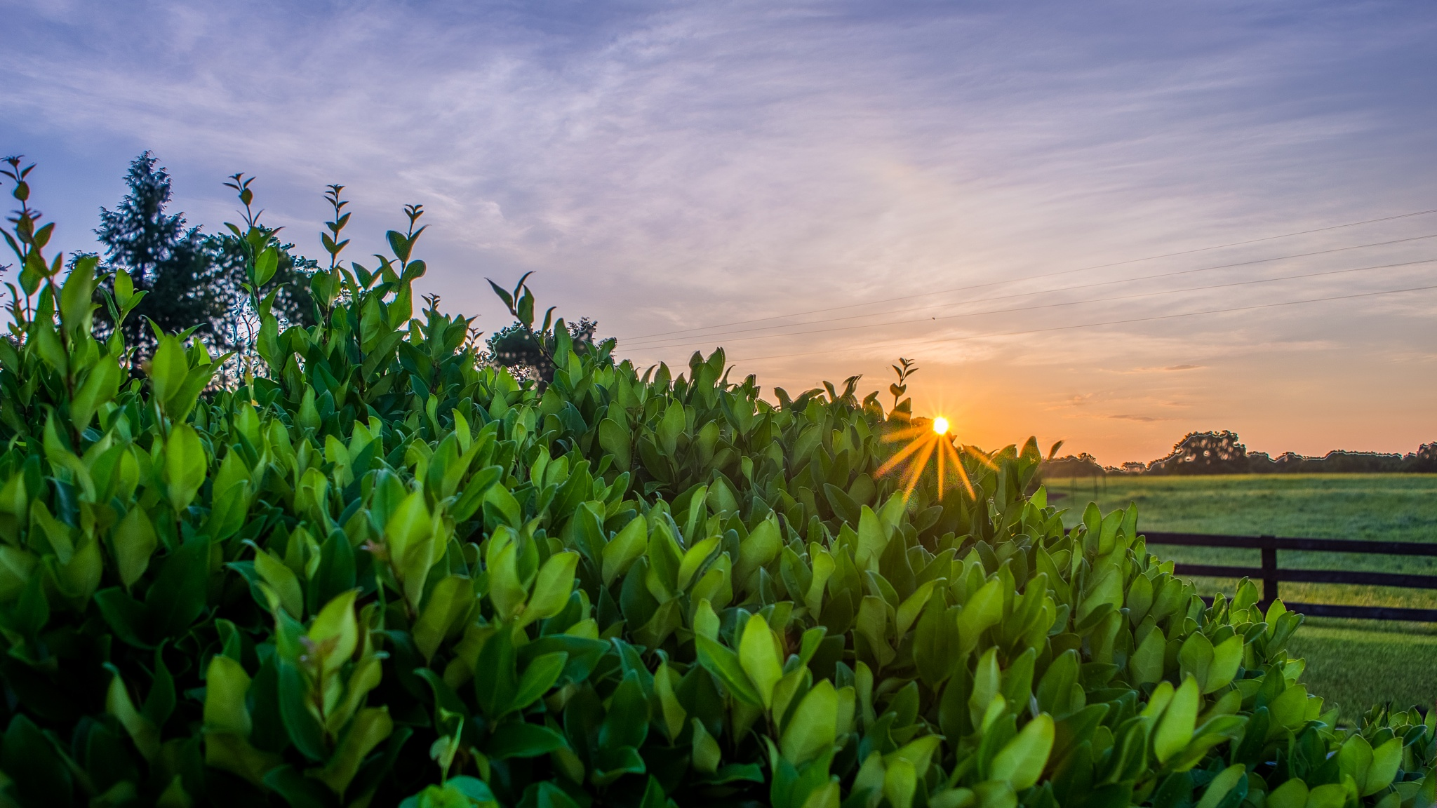 Another Beautiful Sunrise by Jamie Critzer