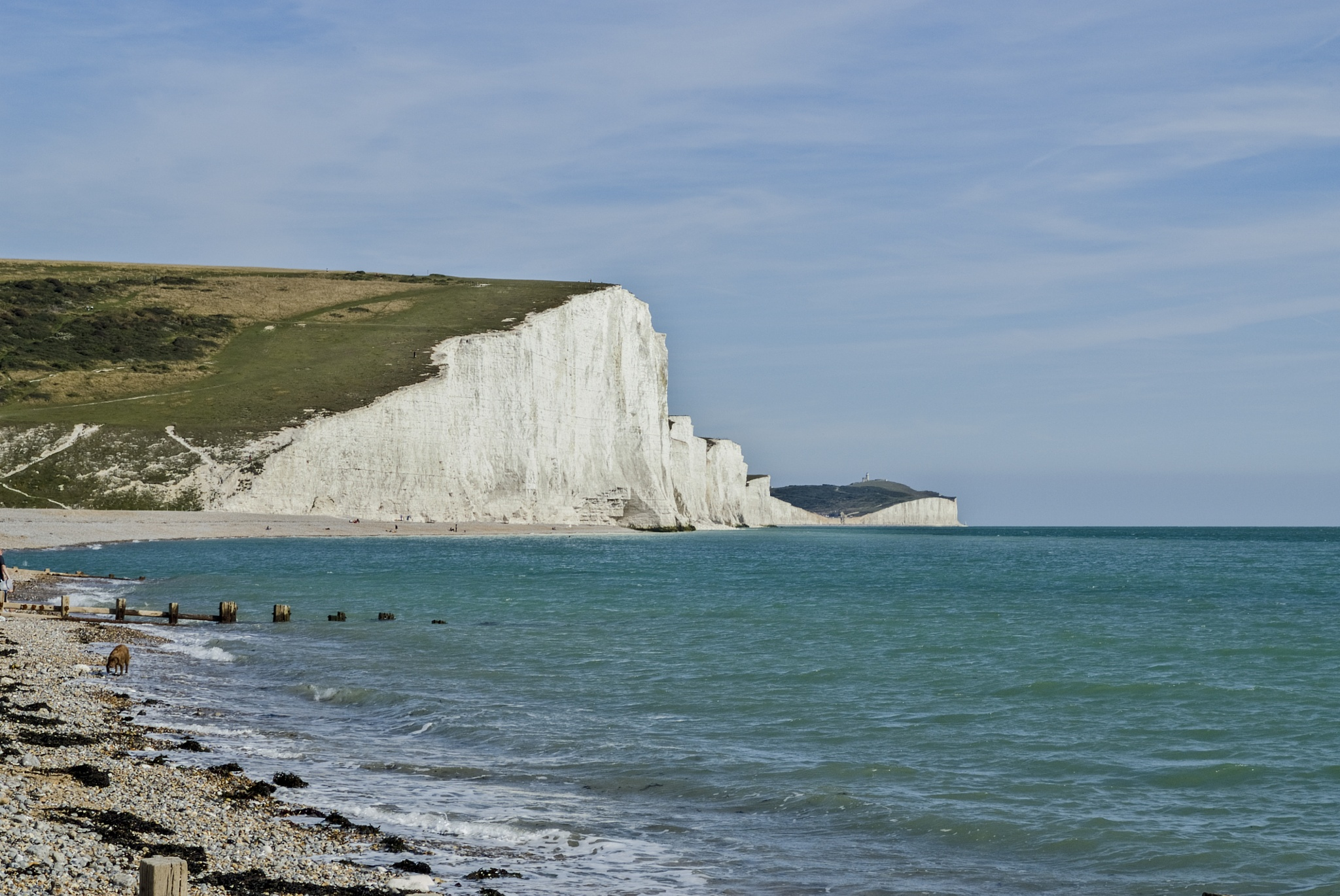 Seven Sisters chalk cliffs from Cuckmere Haven by Jim Hellier