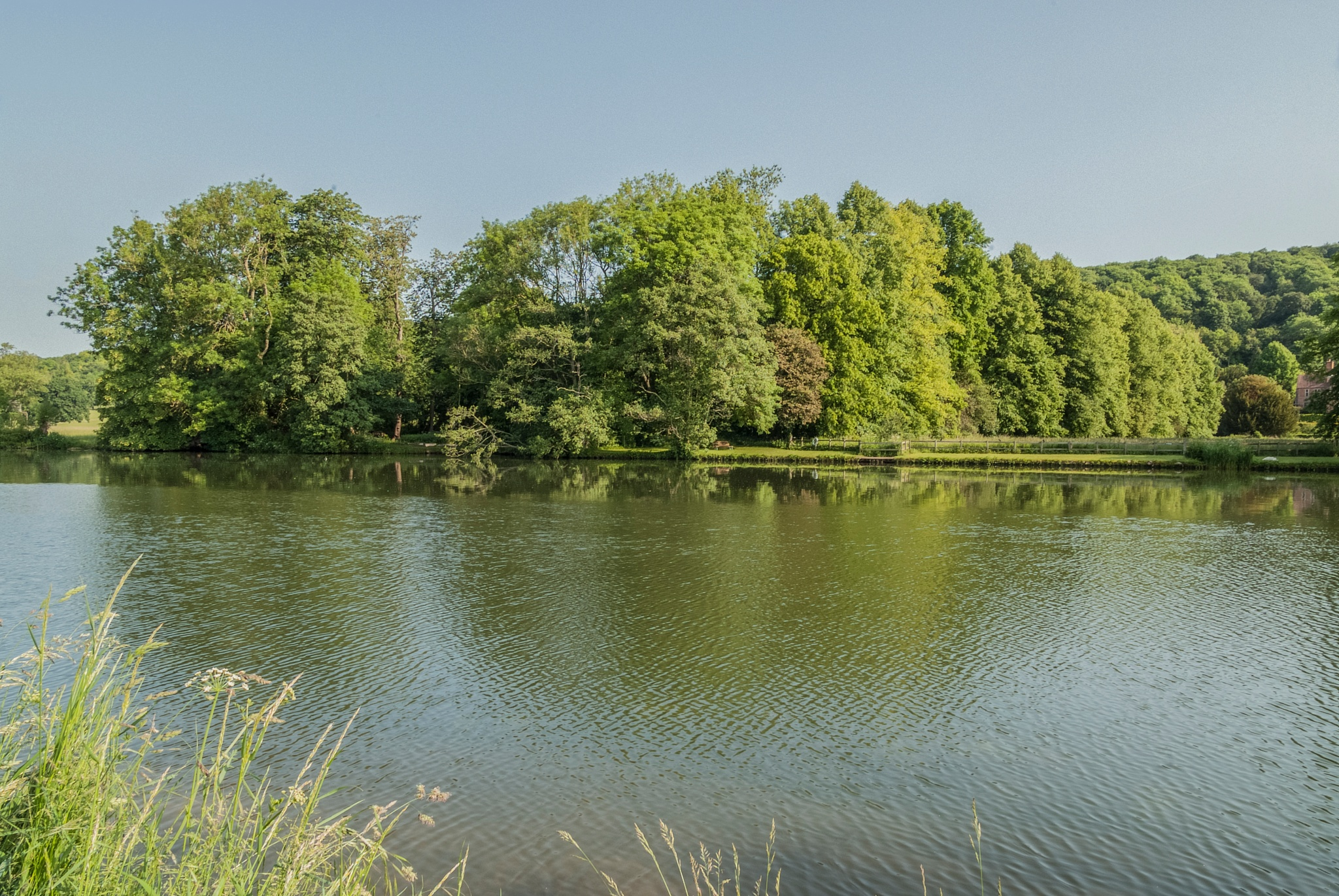 Thames at Hardwick by Jim Hellier