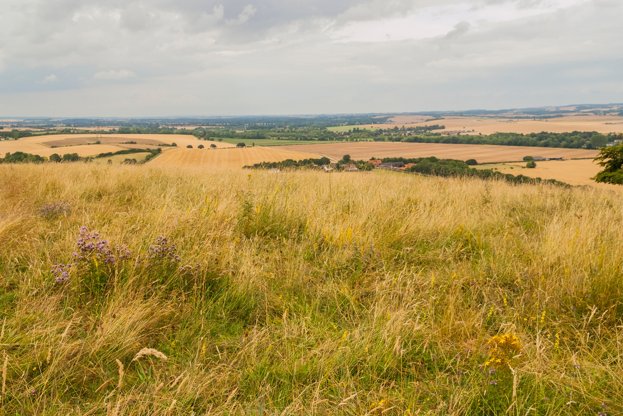 Berkshire downs to the Chilterns by Jim Hellier