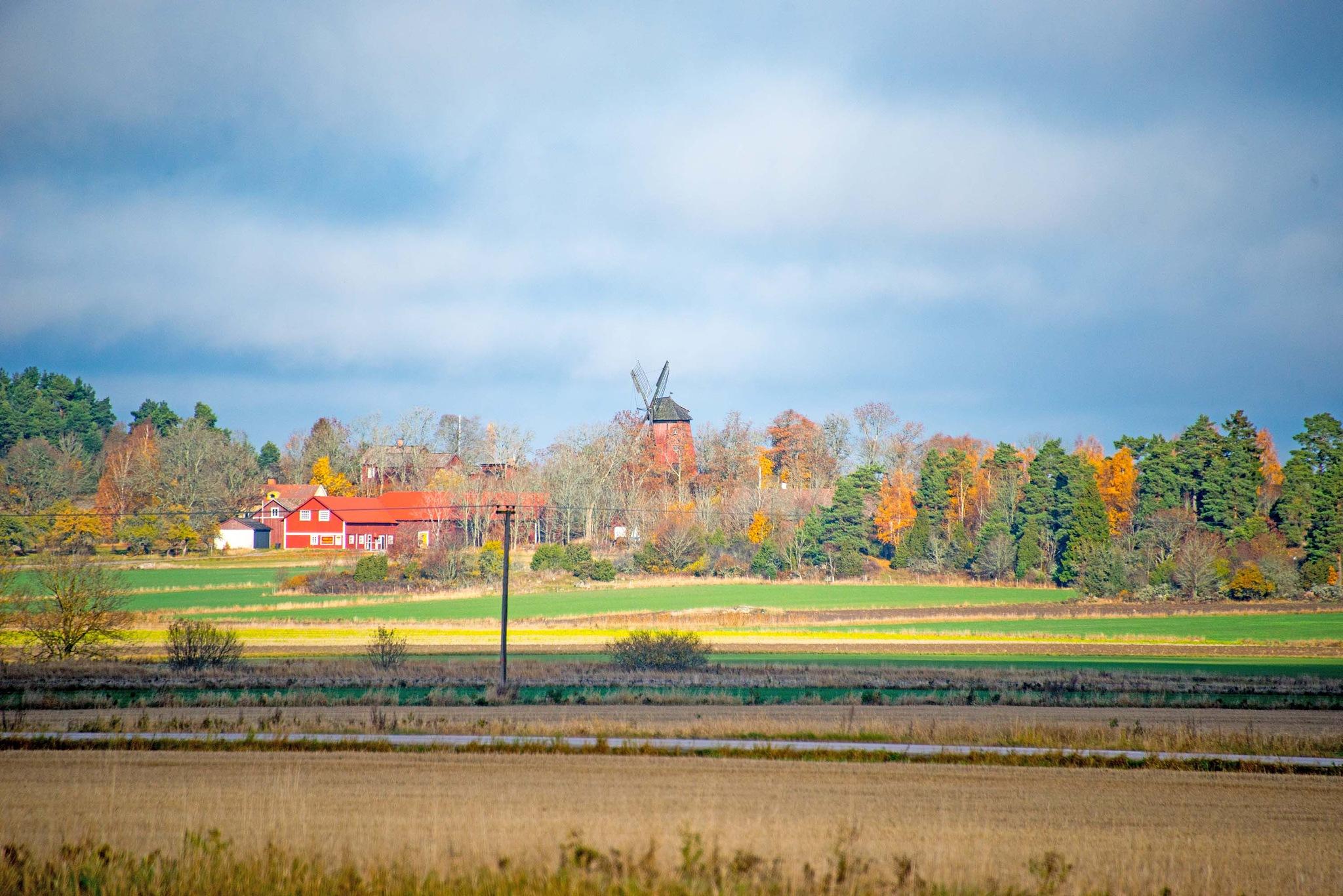 Fall landscape  by bo