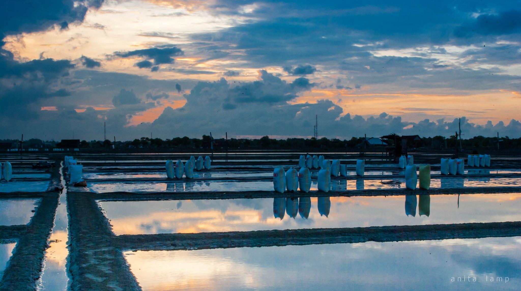 salt fields #2 by Anita Lamp