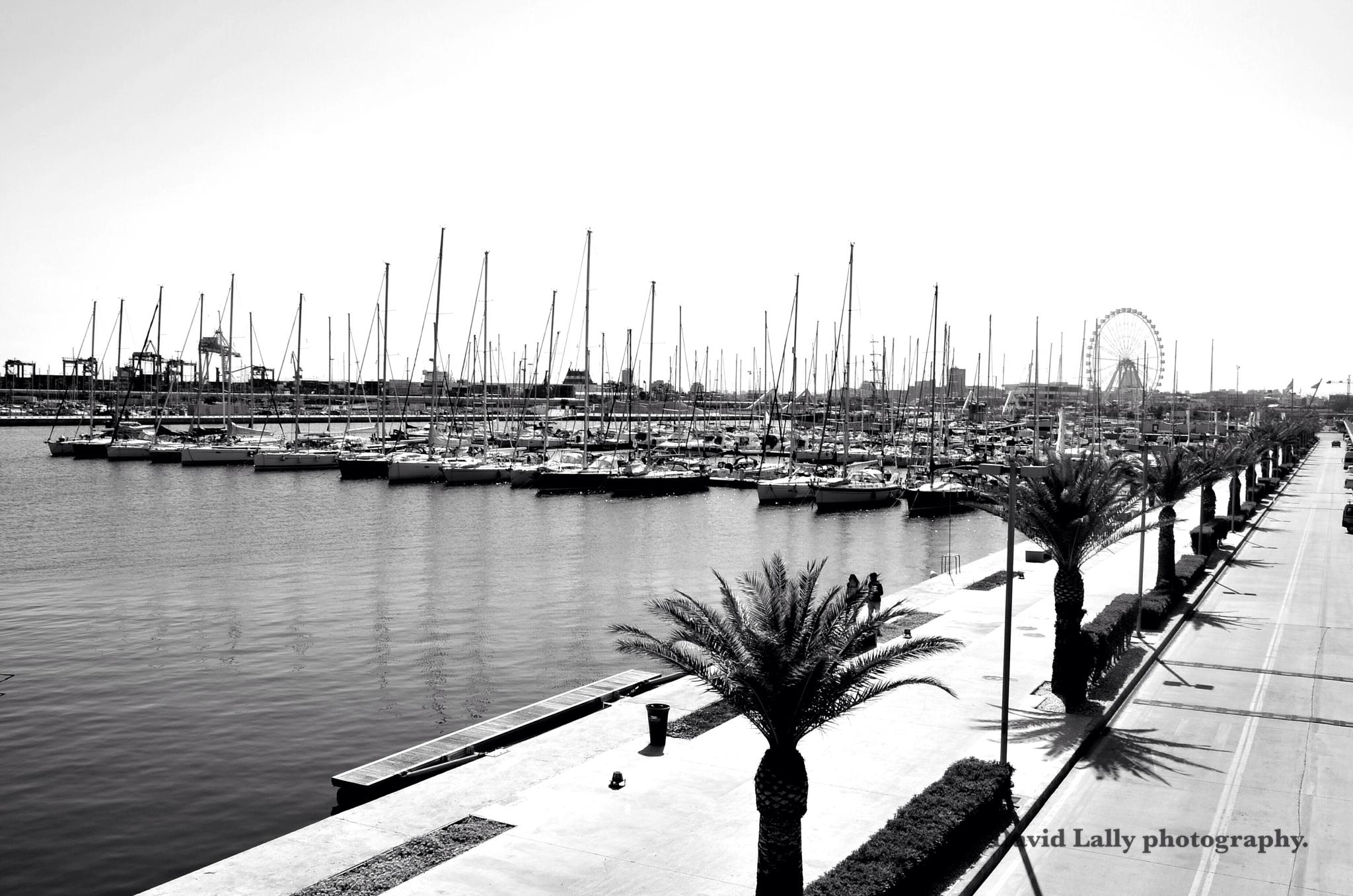 Photo in Travel #valencia #spain #black #white