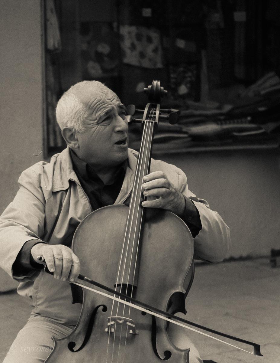 cello, cello..... by seyrosen
