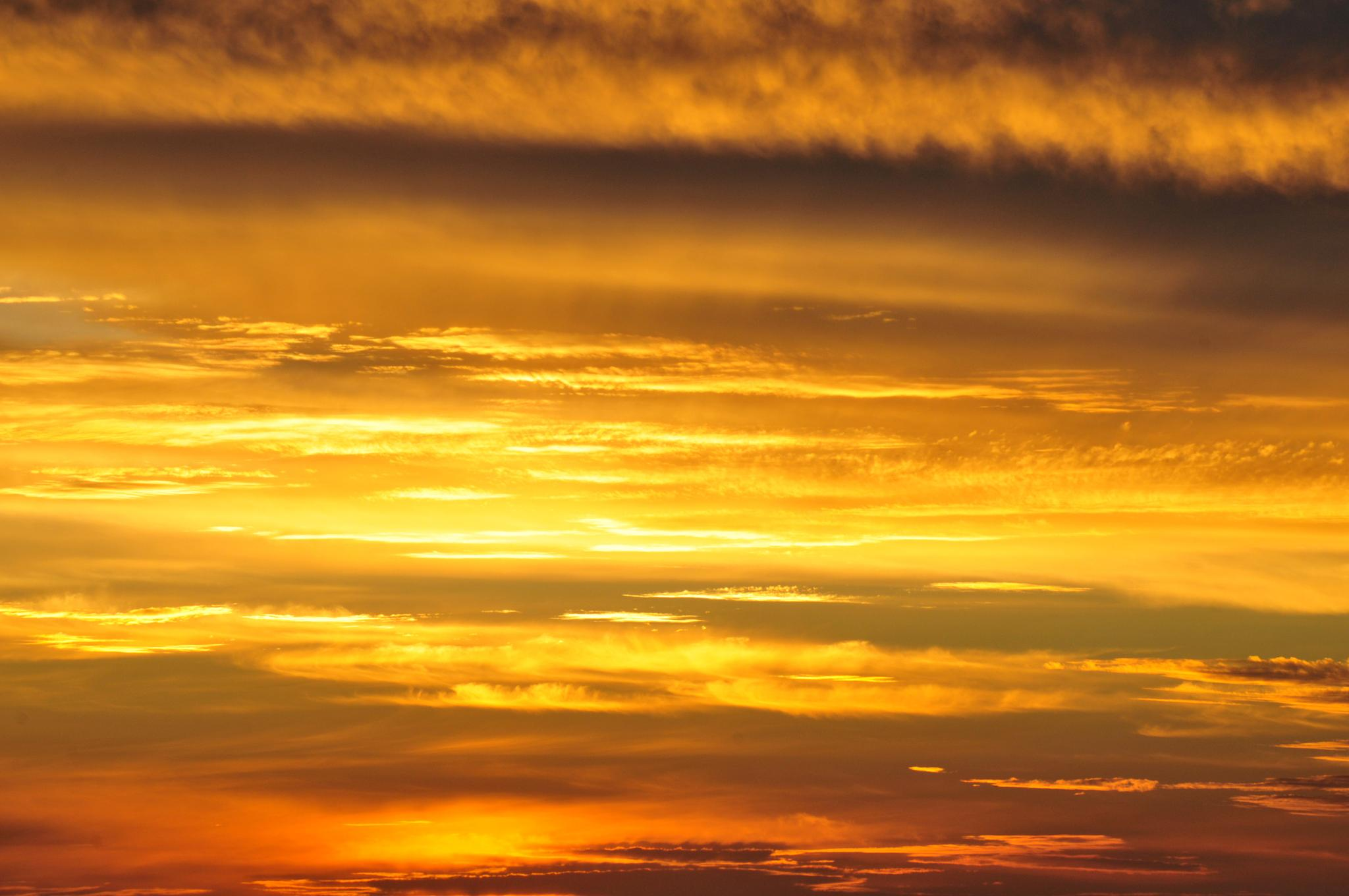 Sunset Gold by Marius