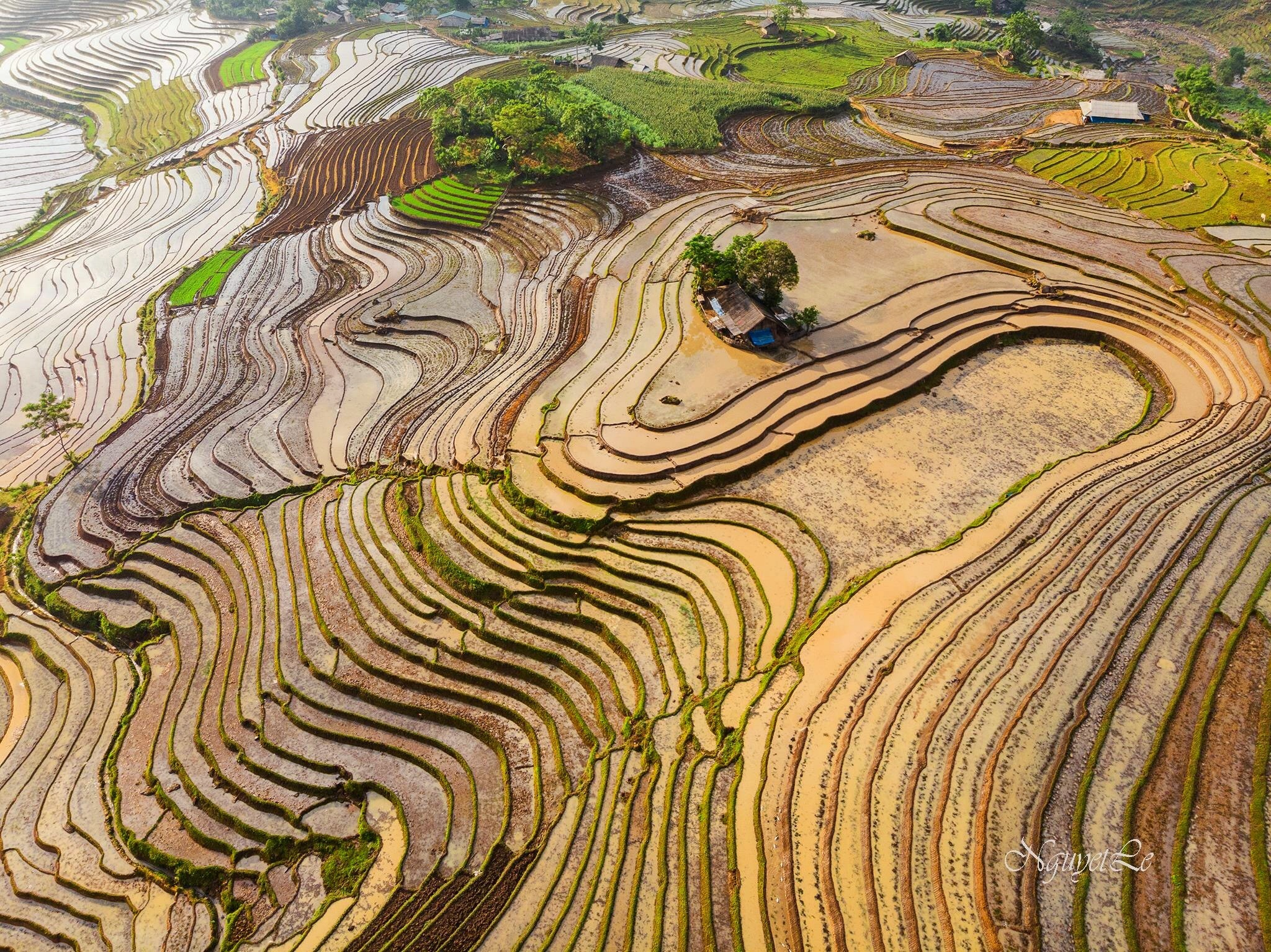 Curved line of soil (Y Ty, Vietnam) by Nguyet Le