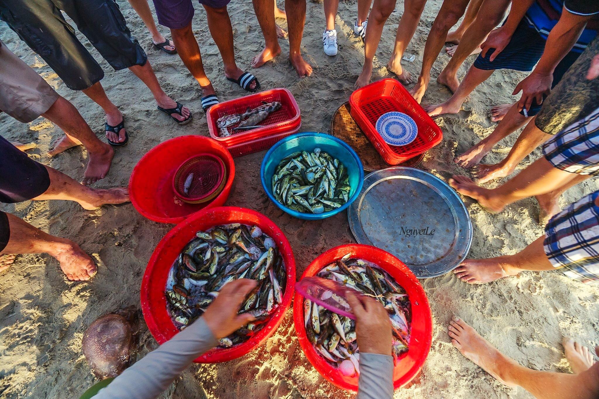Fish dividing (Da Nang, Vietnam) by Nguyet Le