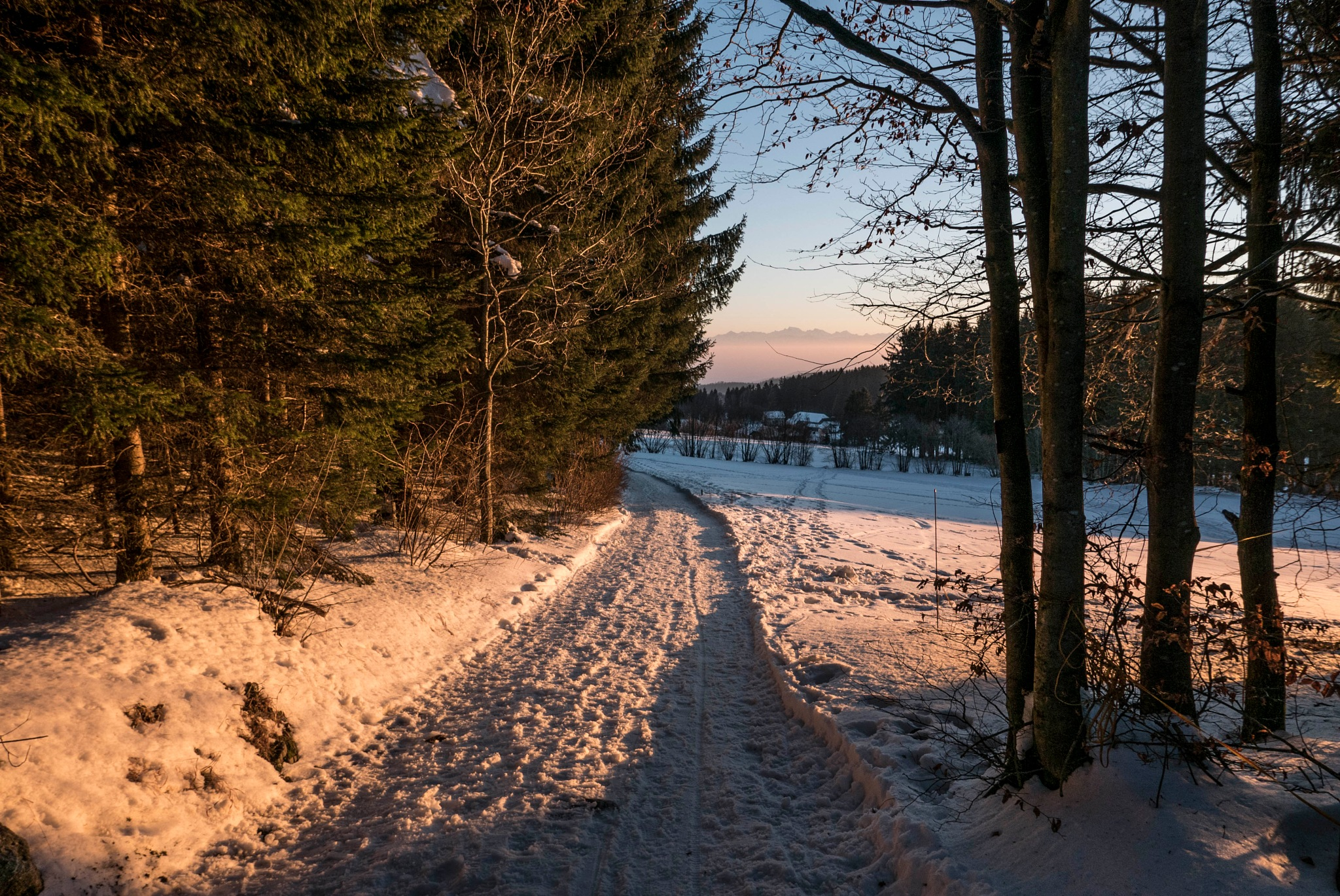 EVENING SUN by Werner Schrotta