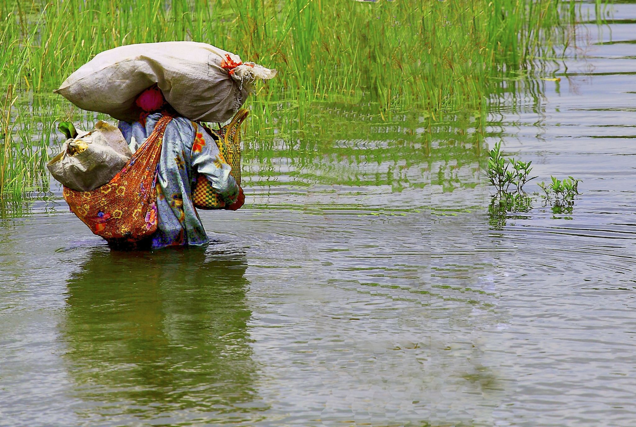 Struggling passing the flood by muhasrul