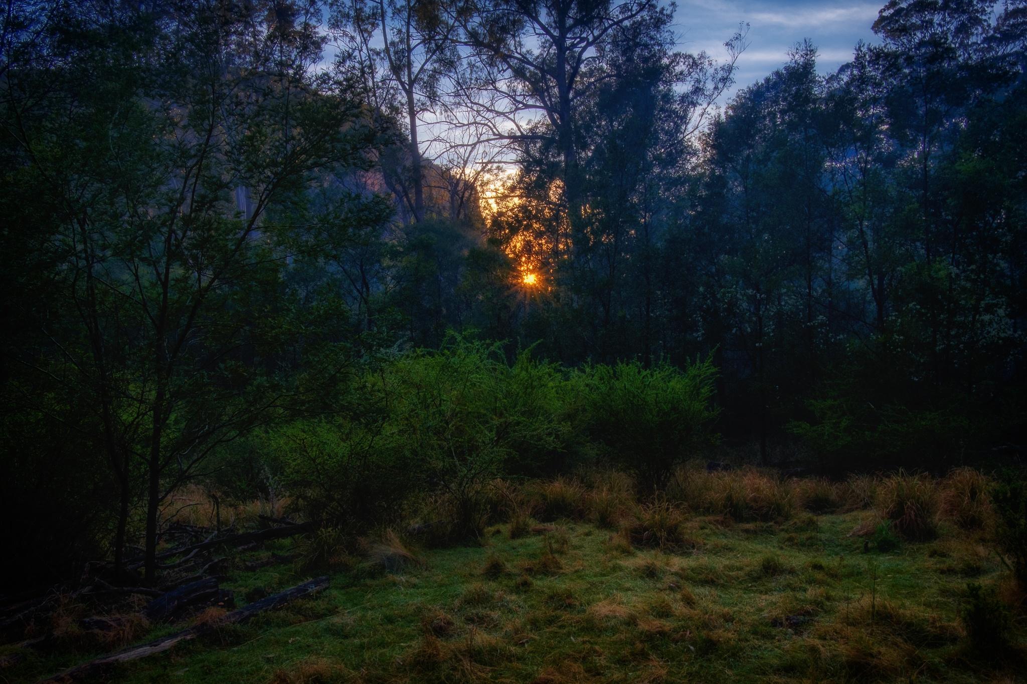 Sunrise at Annie Rowan by Peter Medbury