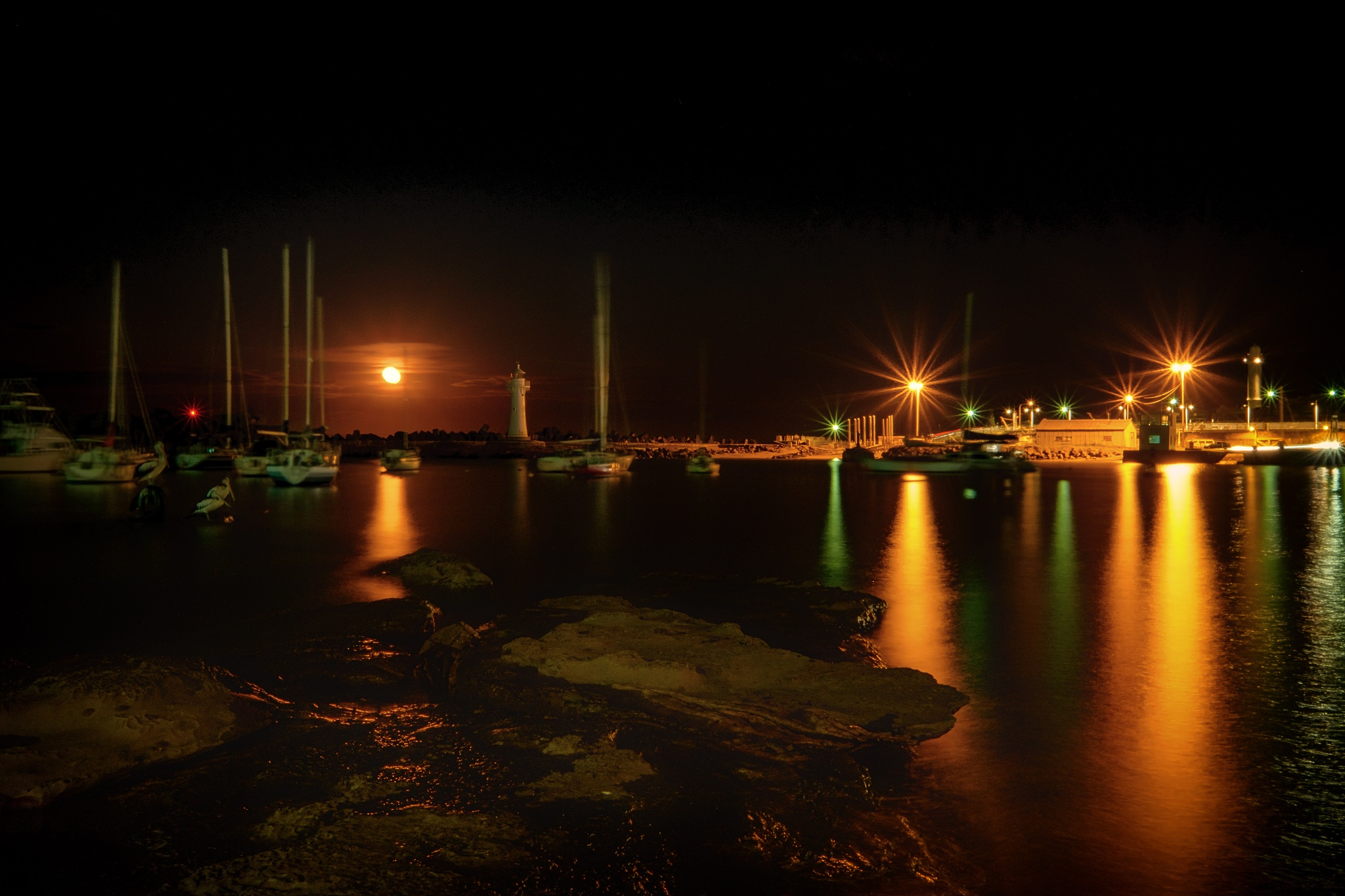 Wollongong Harbour under Lights by Peter Medbury