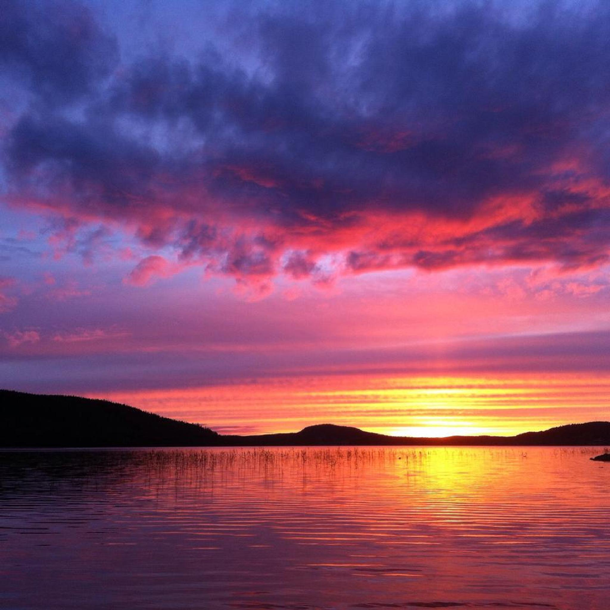 Late evening by Birgith Haraldsson