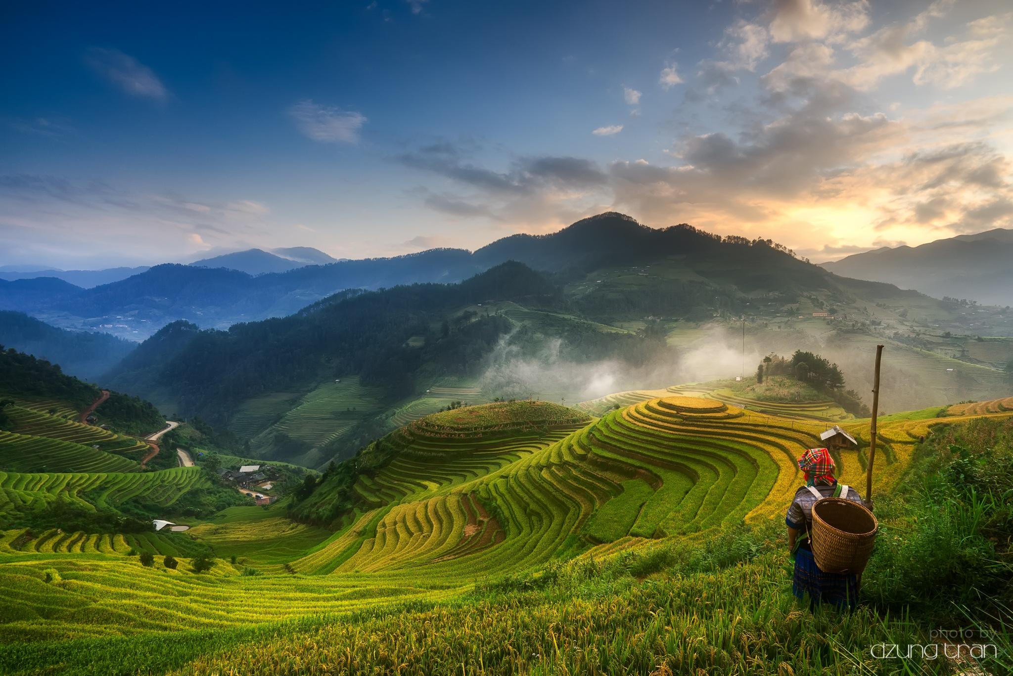 Mu Cang Chai Rice Terraces by Dzung Tran