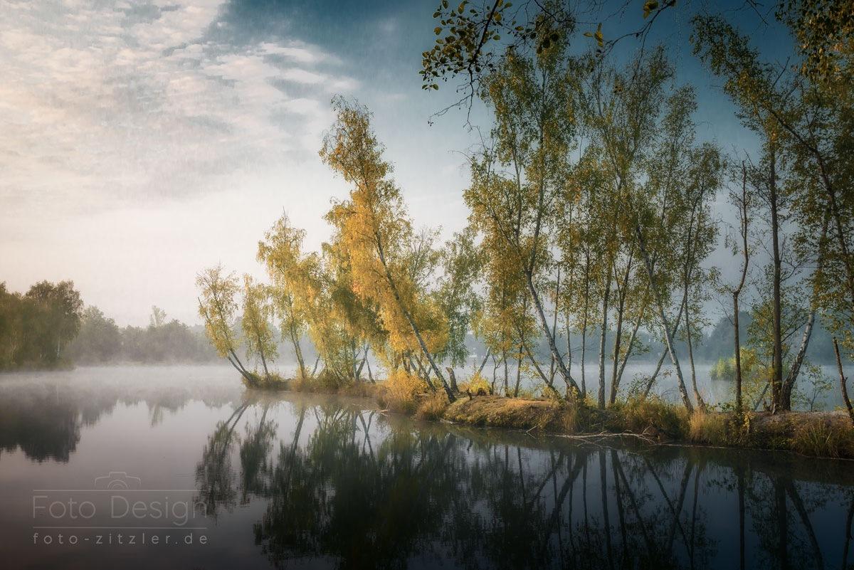 birch island by Hans Zitzler