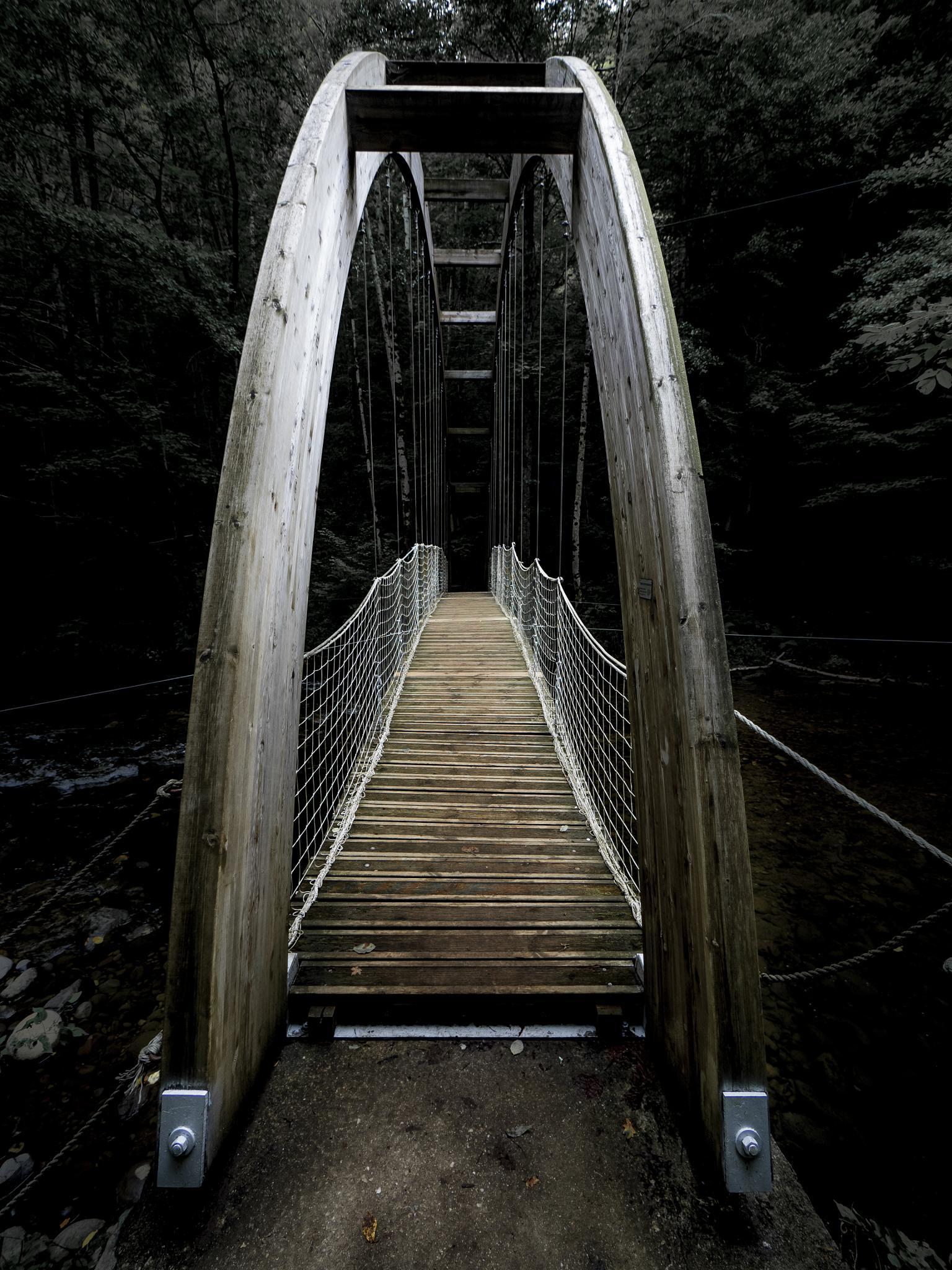 The footbridge by Erik Jaud