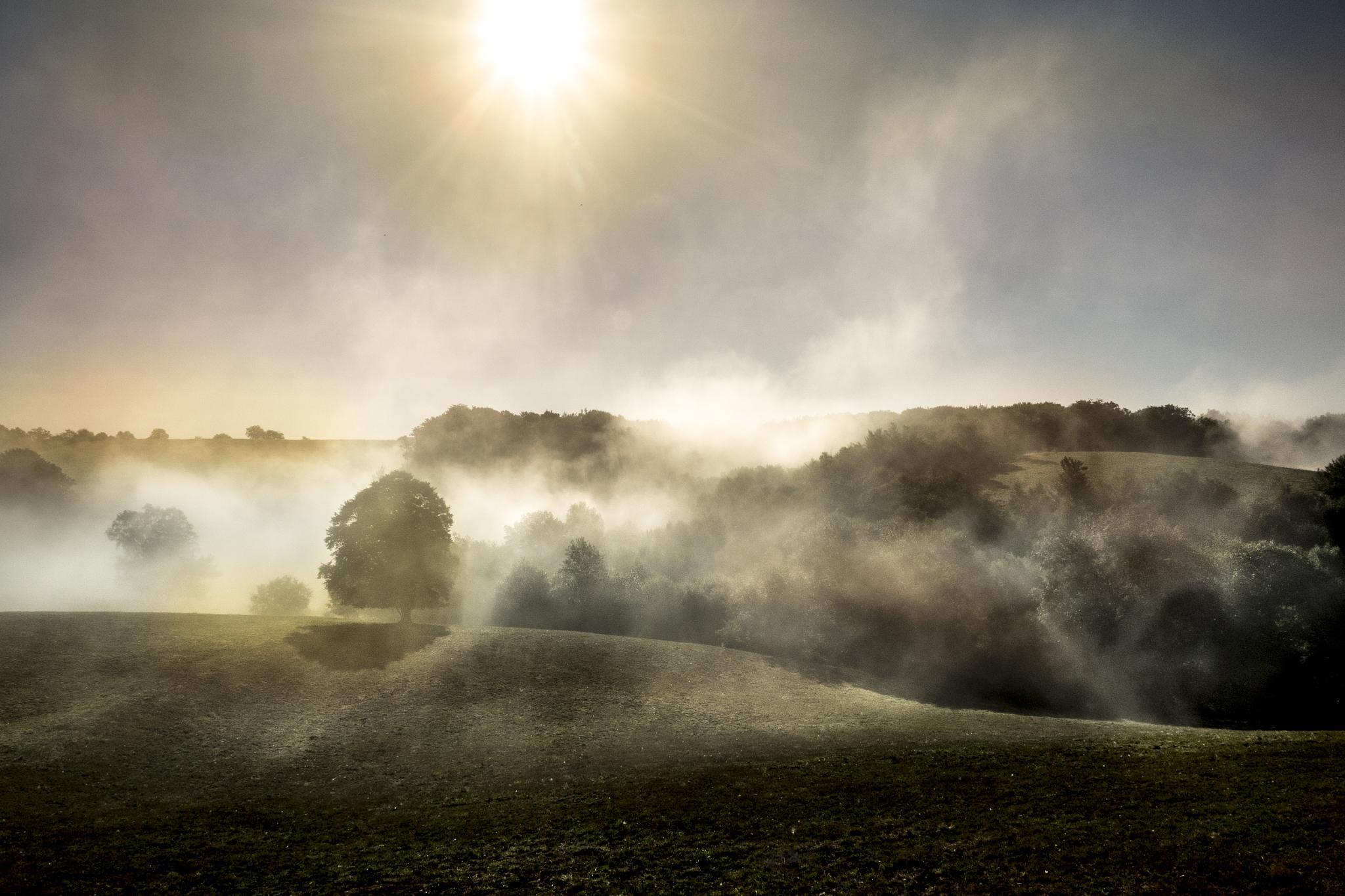 Haze and sun by Erik Jaud