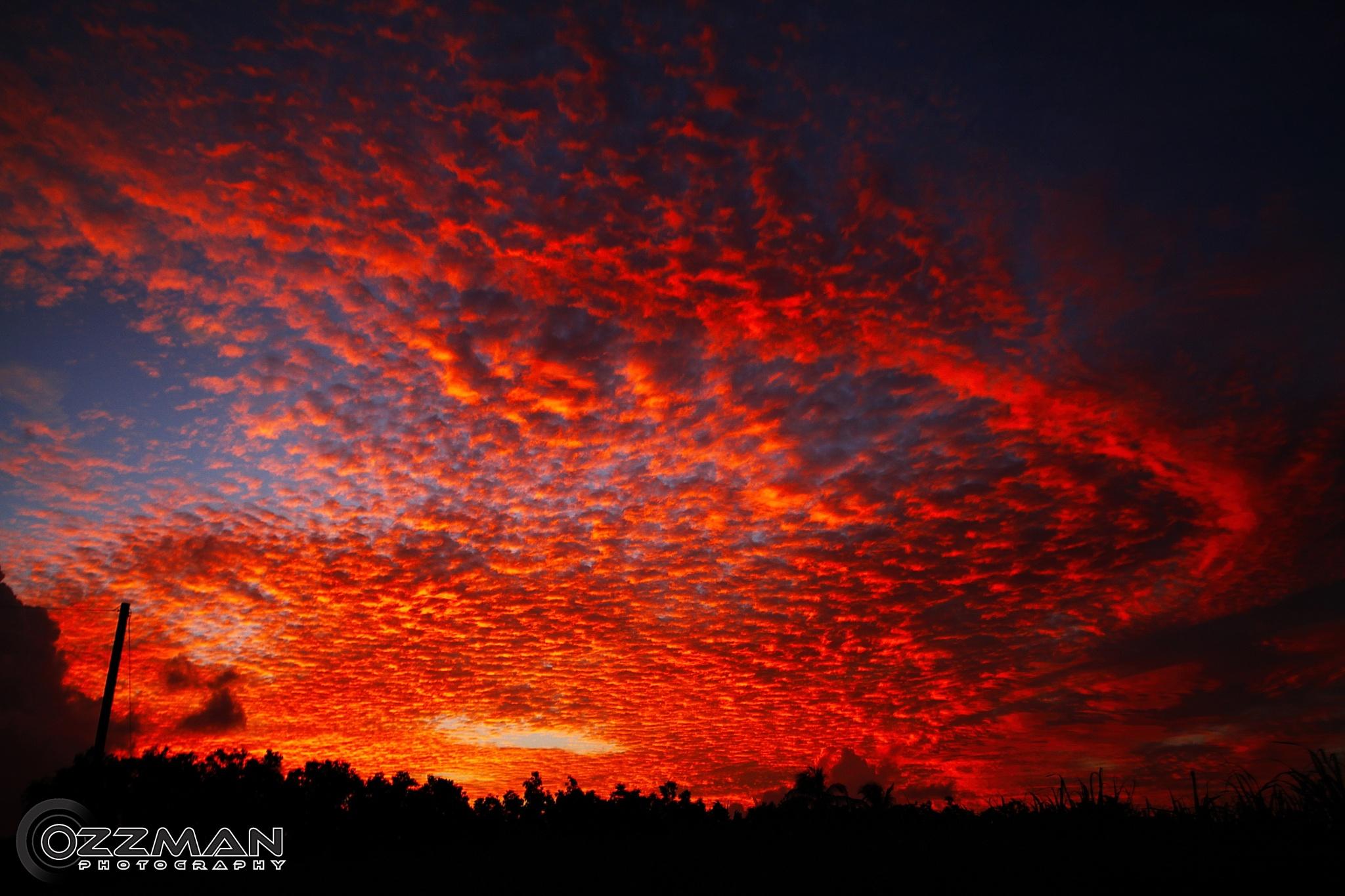 Red Sunset by Ozzy Osborne