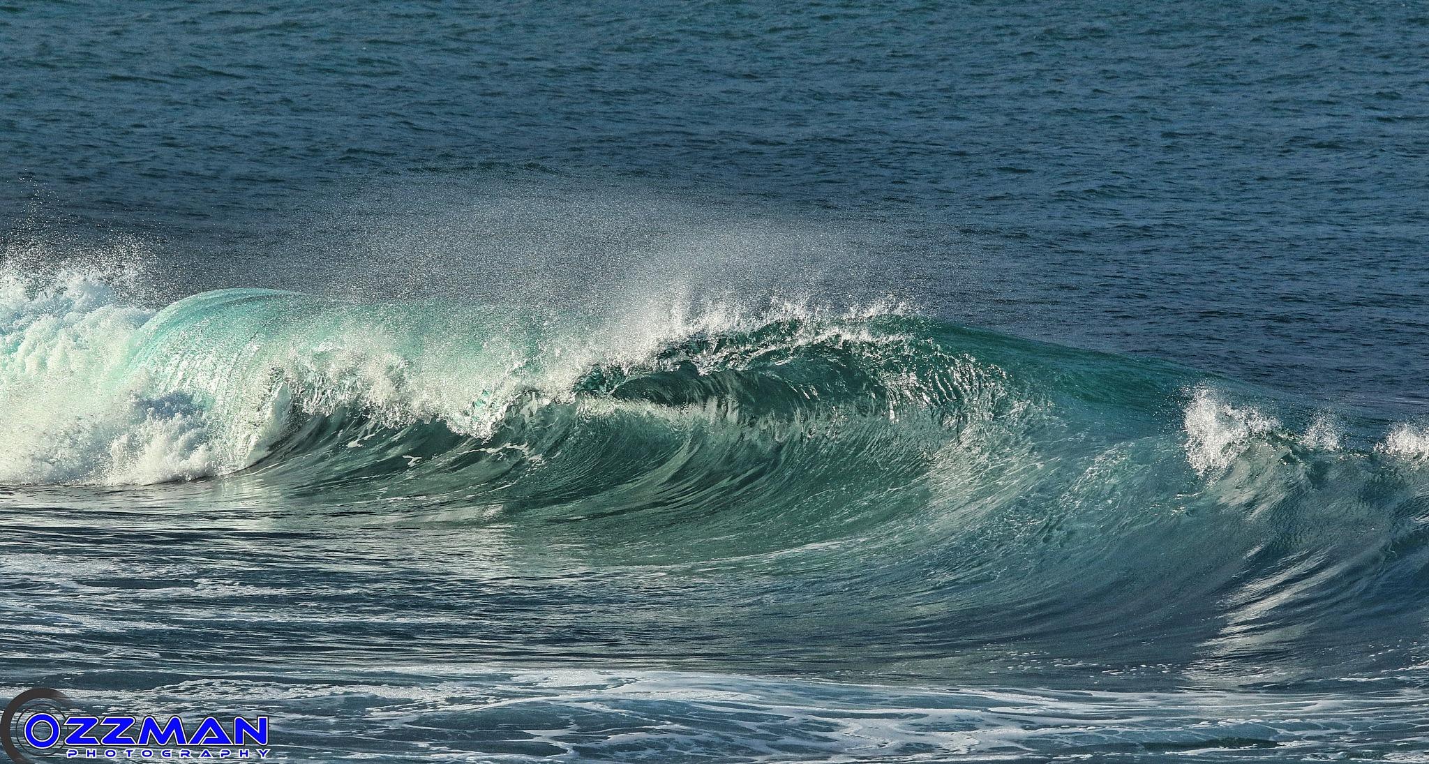 Wave by Ozzy Osborne