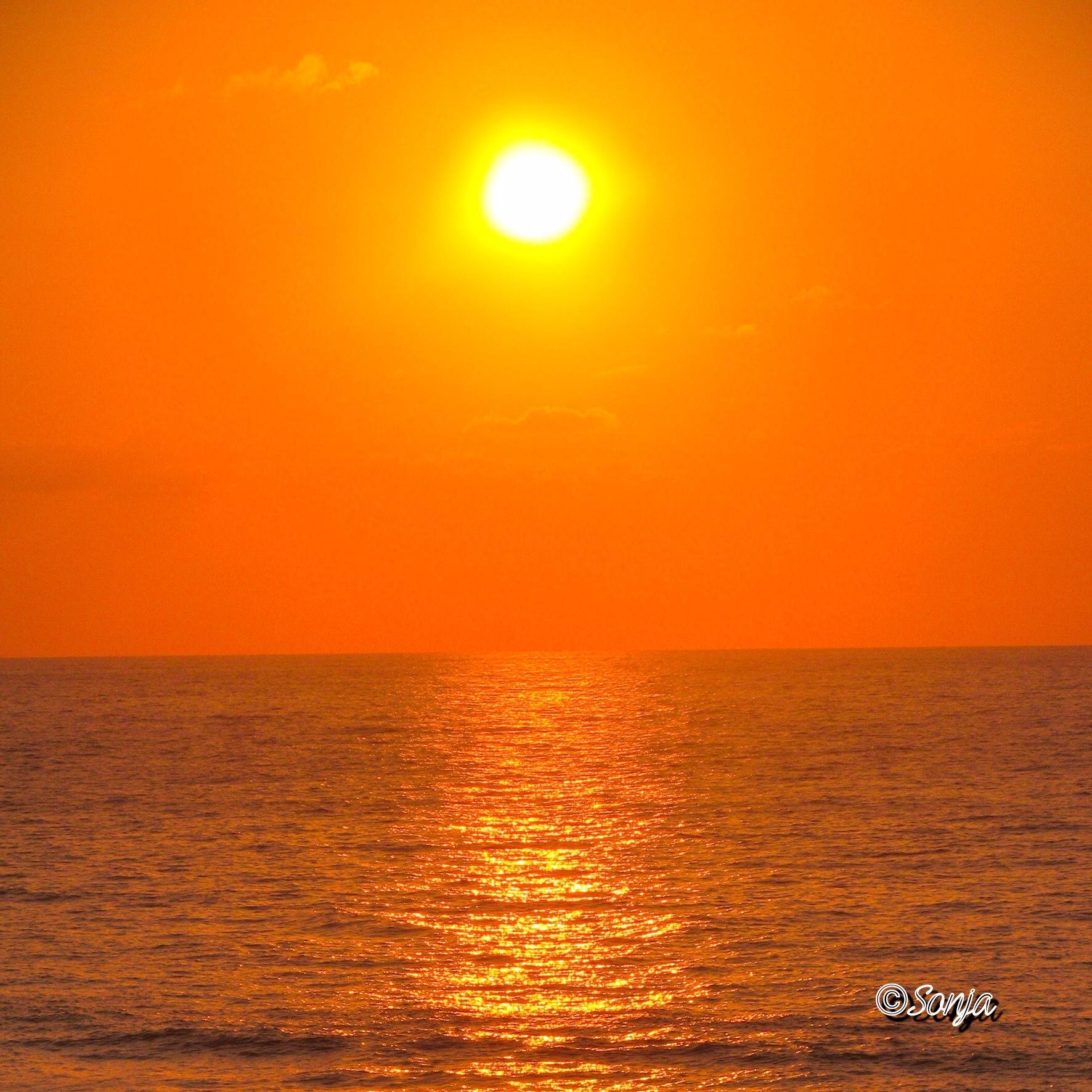 Beach Sunset by Sonja McCoy