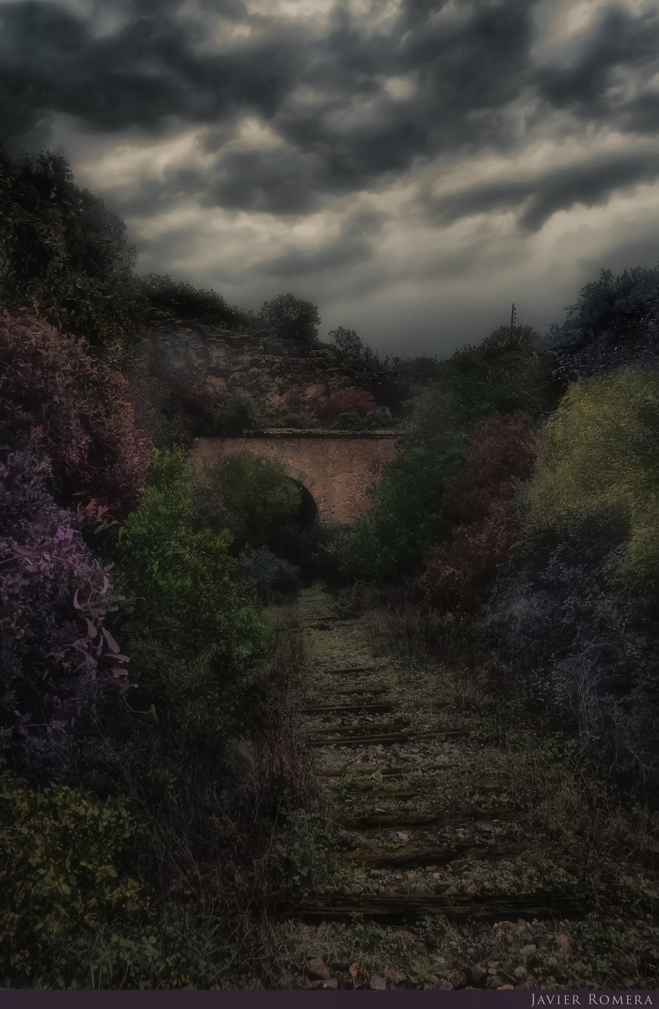 Photo in Landscape #tunnel #nature #color #cloudy #colors #way