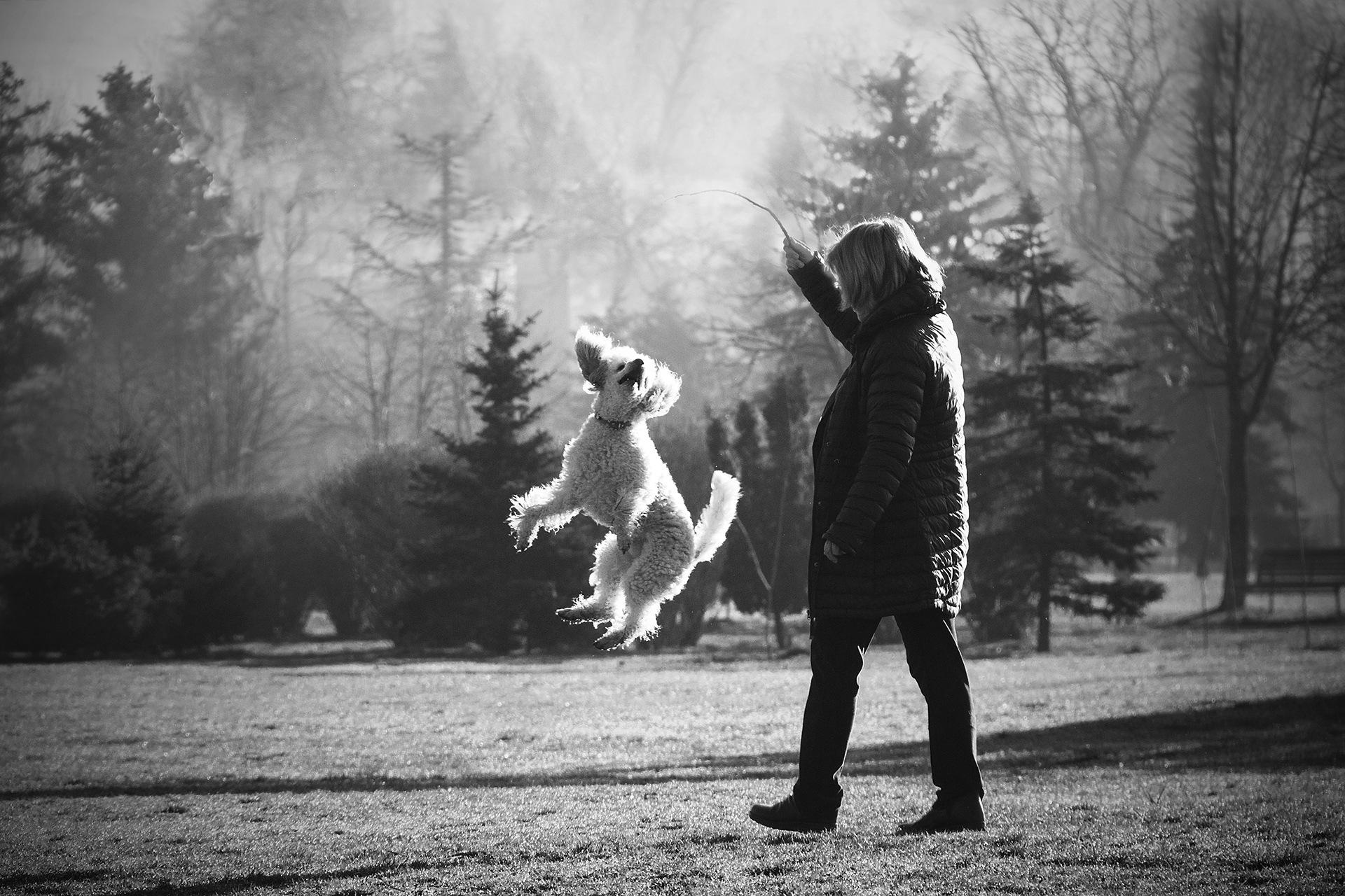 Скокът by White Raven