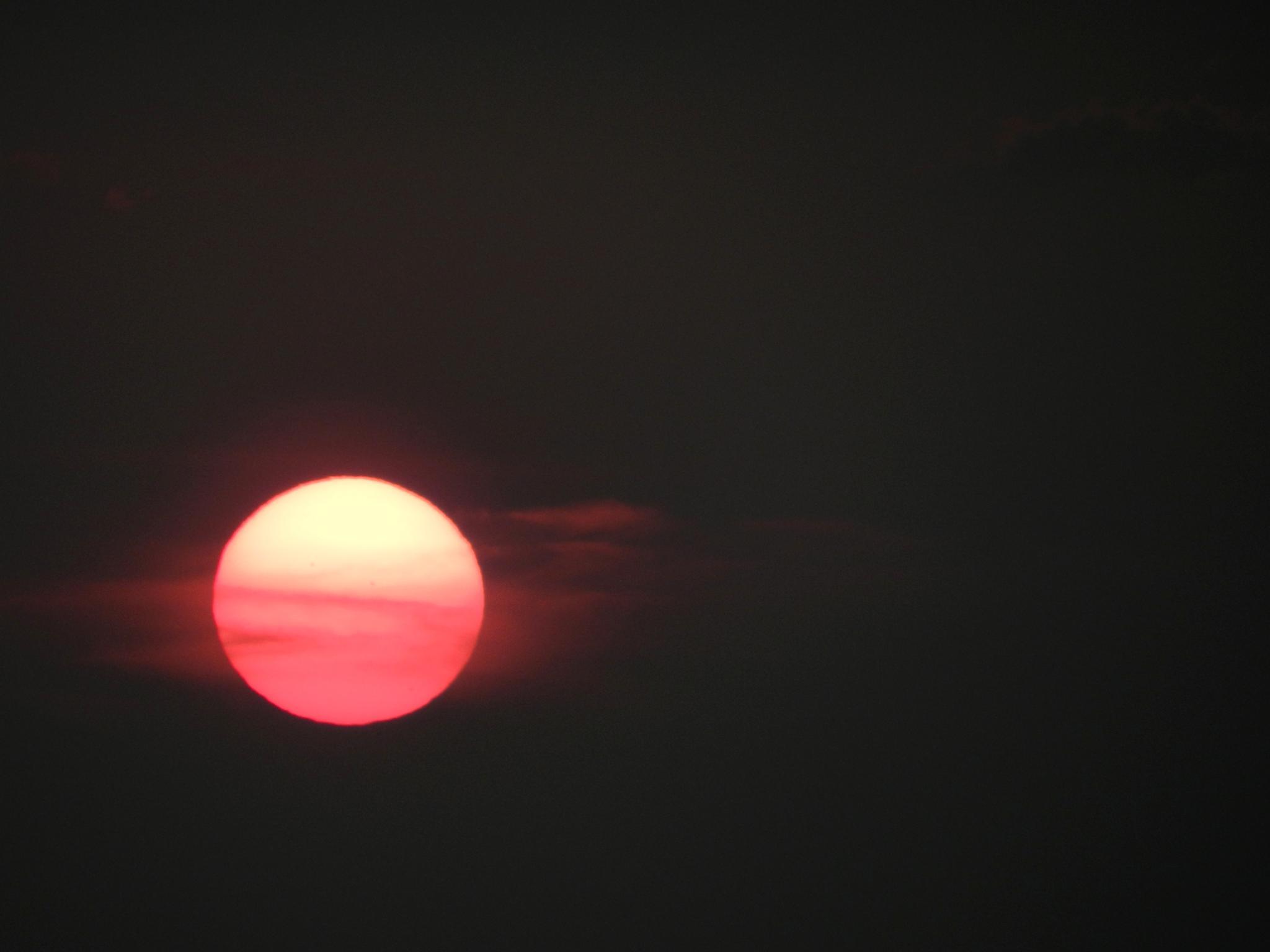 Photo in Street Photography #sun #sundown #sky #clouds
