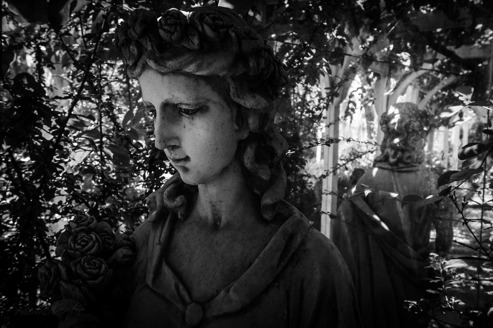 greatExpectations by lightFrames - Pictures