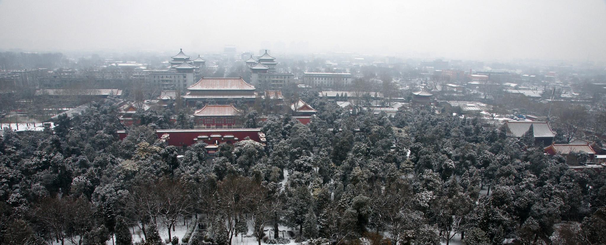 Forbidden City in winter by Marko Erman