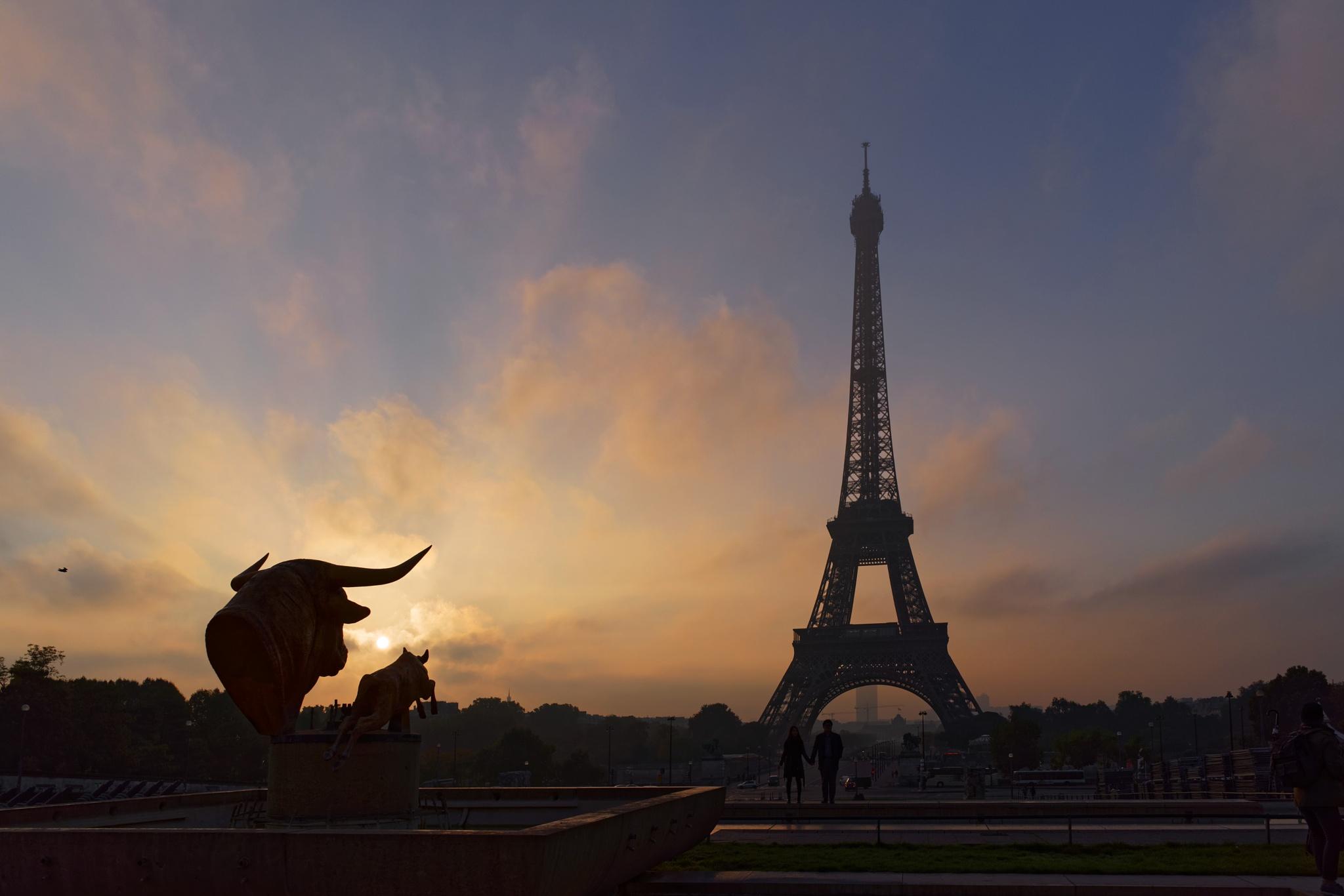 Eiffel Tower at sunrise by Marko Erman