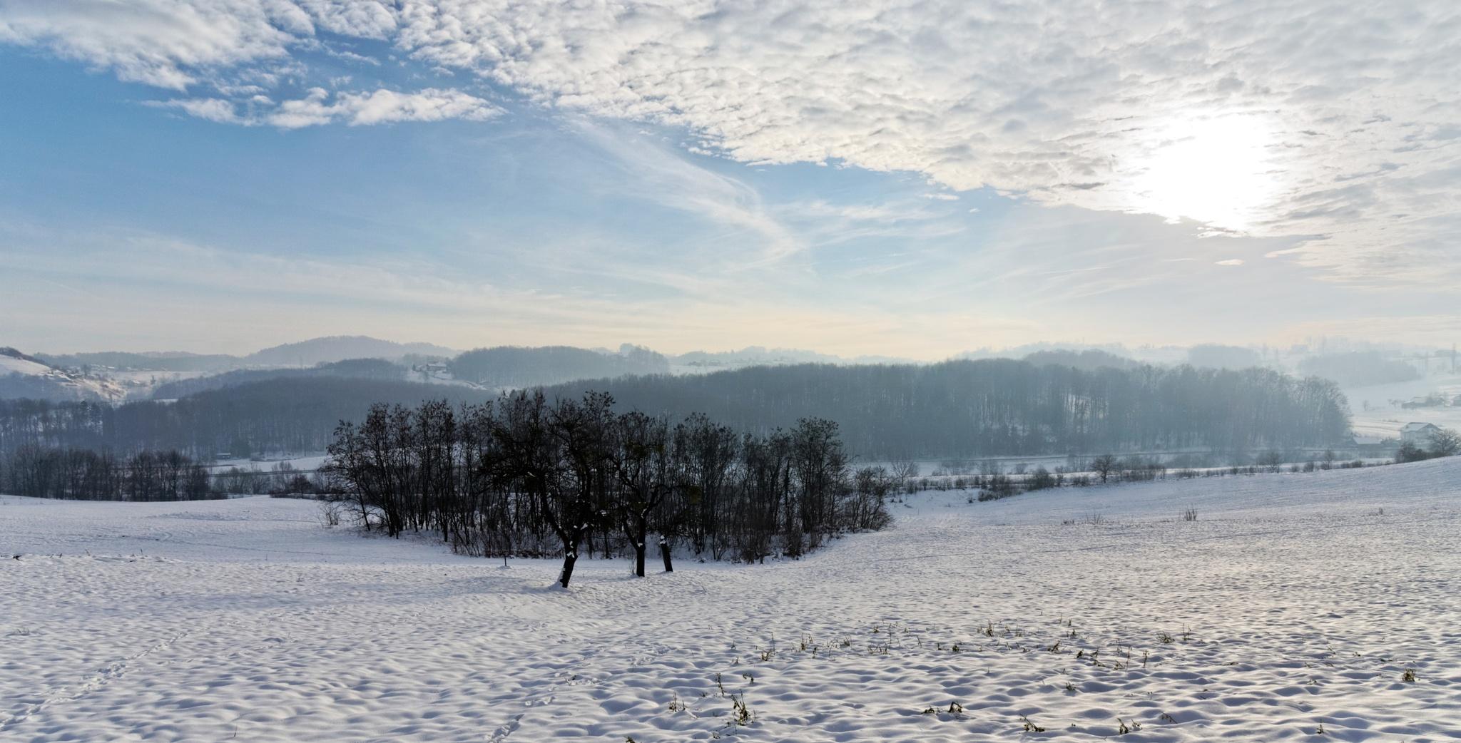 Winter panorama by Marko Erman
