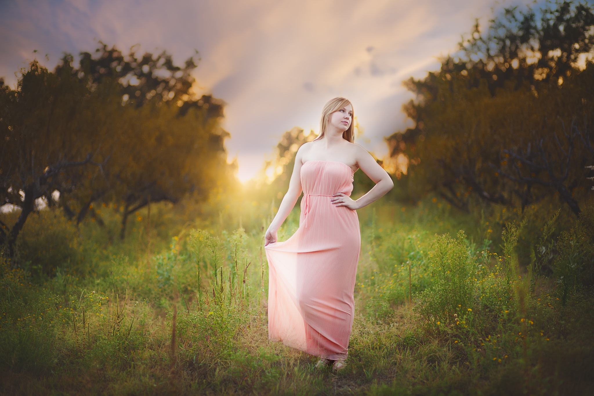 Pink Light by Declaring His Glory photography