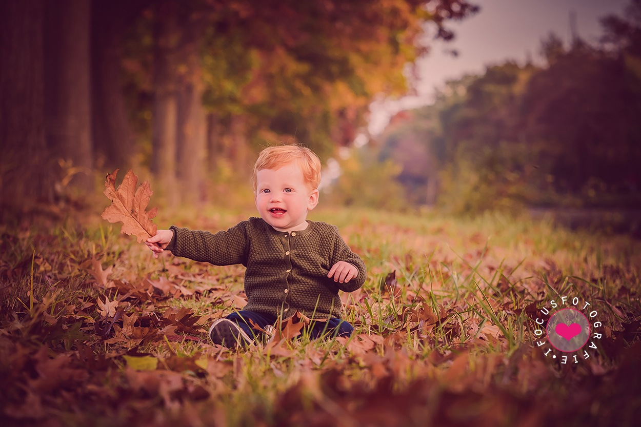 Little boy and autumn by ifocus