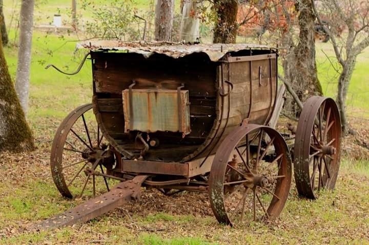 Old Wagon by Laurie Puglia