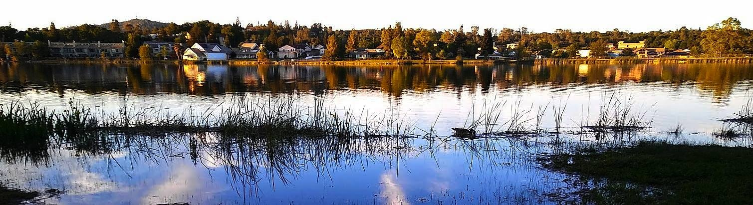 Cameron Park Lake by Laurie Puglia