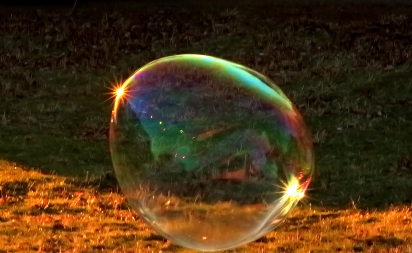 The Amazing Bubbles II by Laurie Puglia