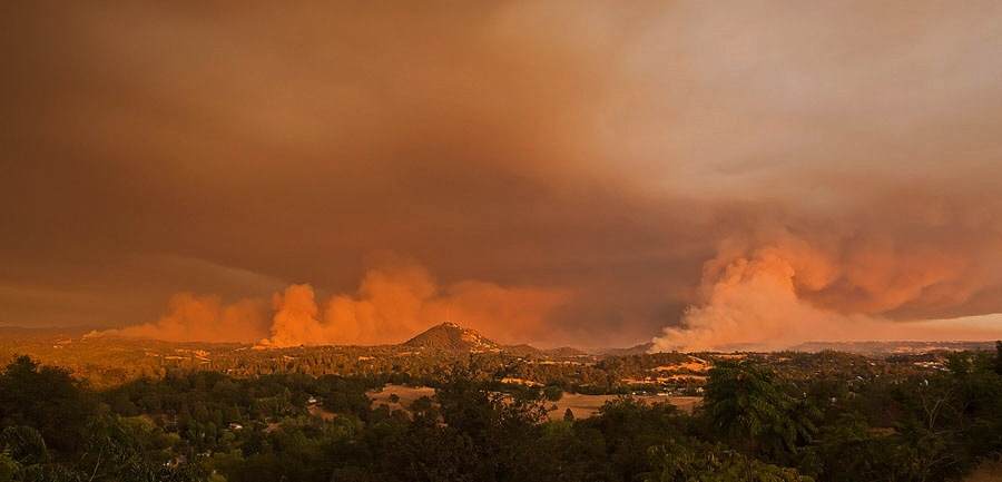 Butte Fire by Laurie Puglia