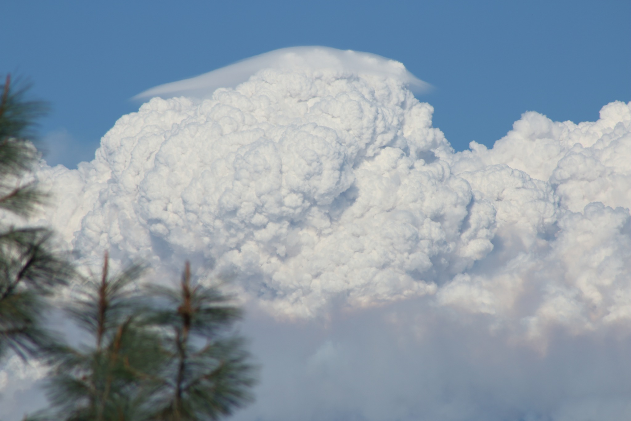 Pyrocumulous Clouds by Laurie Puglia