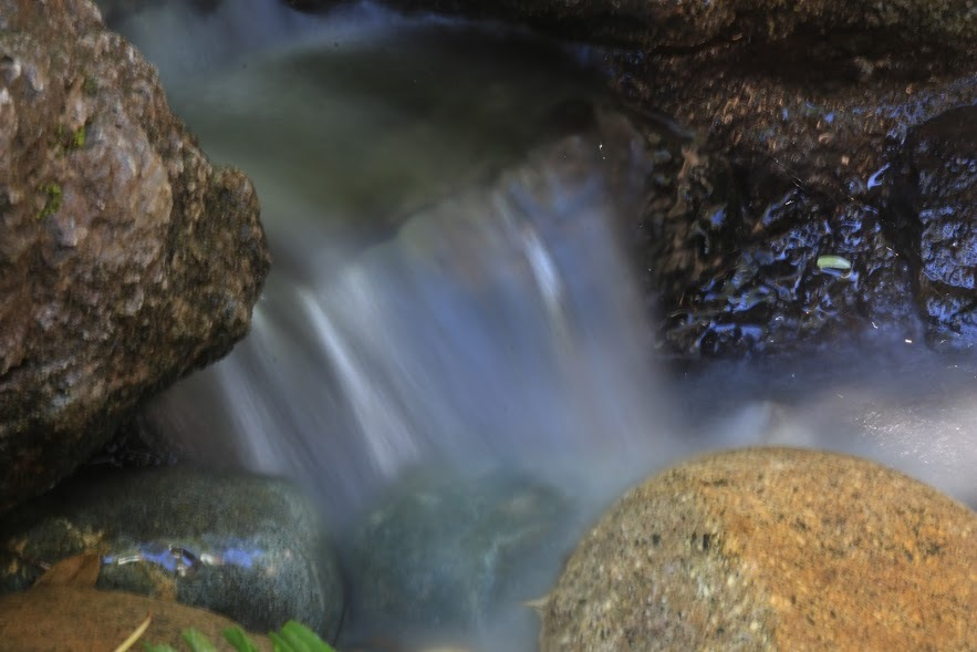Mini Waterfall by Laurie Puglia