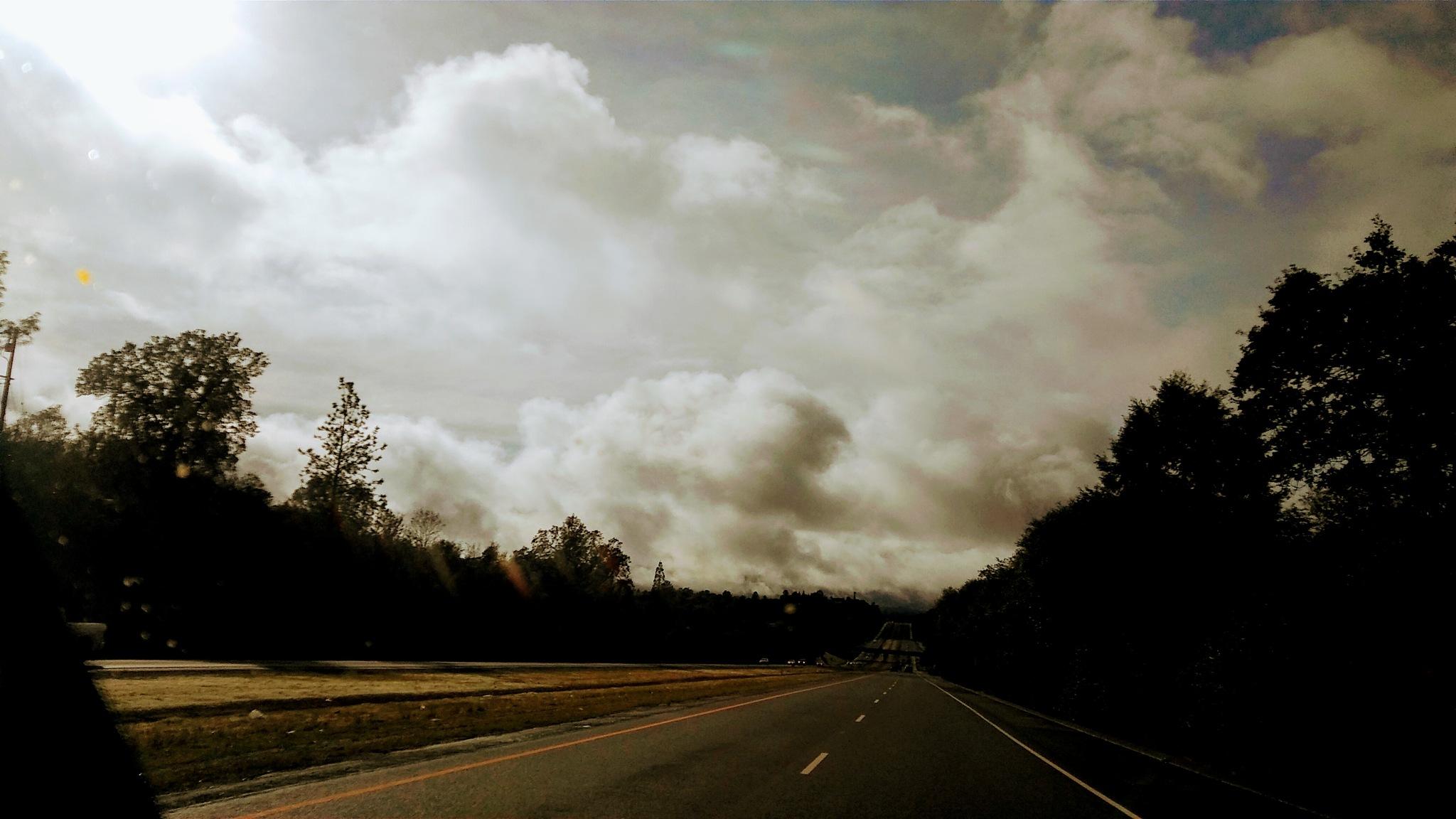 El Dorado Freeway by Laurie Puglia