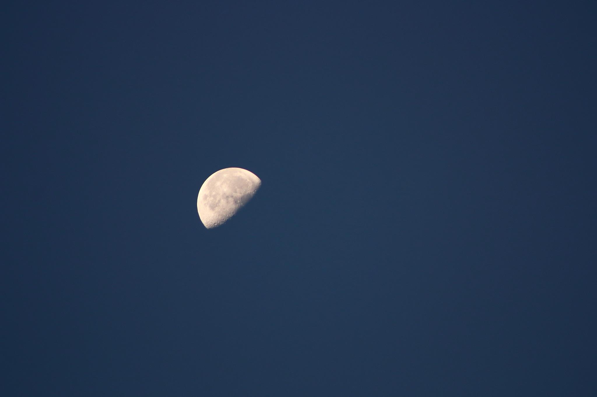 Moon II by Laurie Puglia
