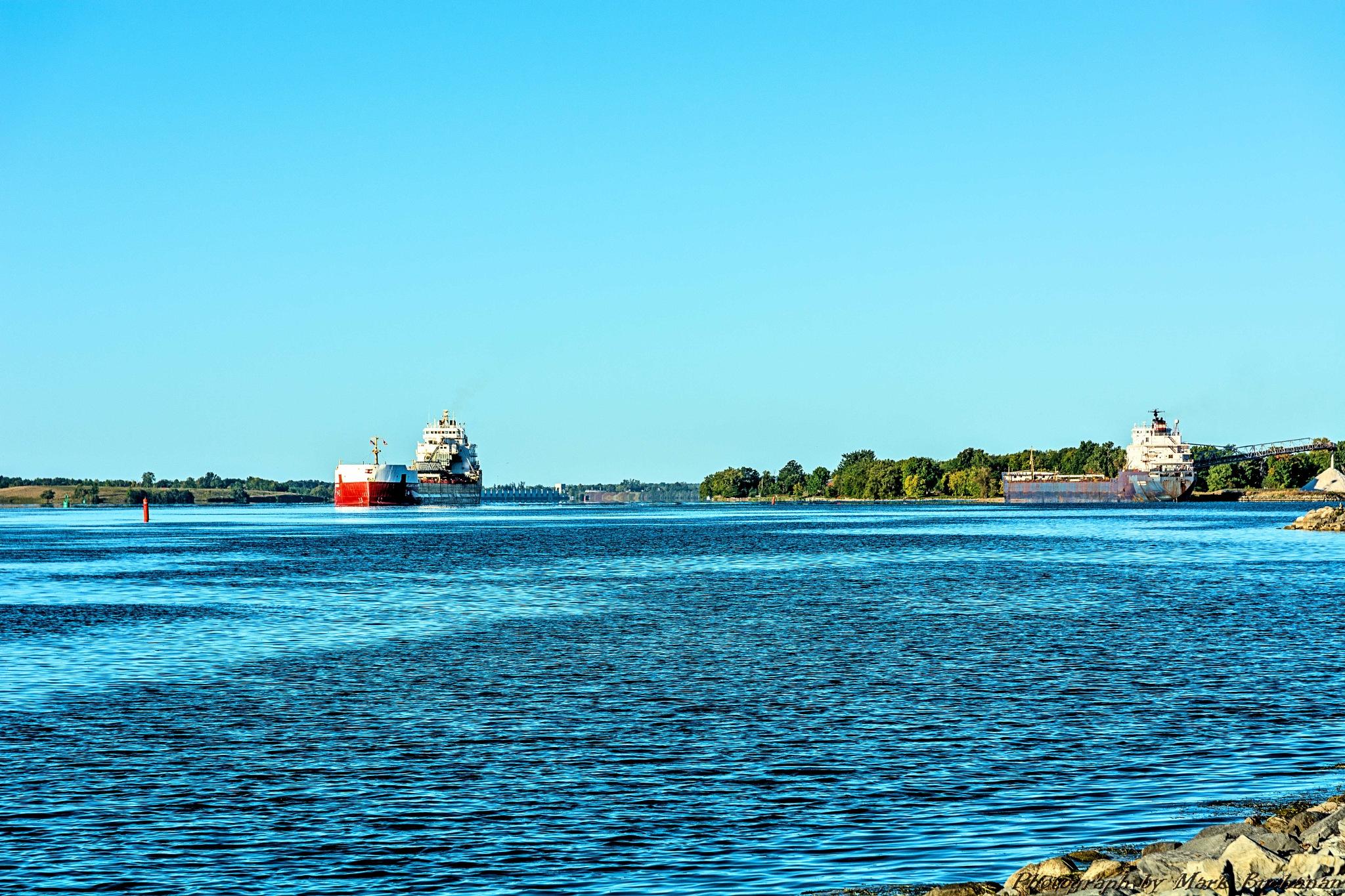 Seaway freighters by Mark Buchanan