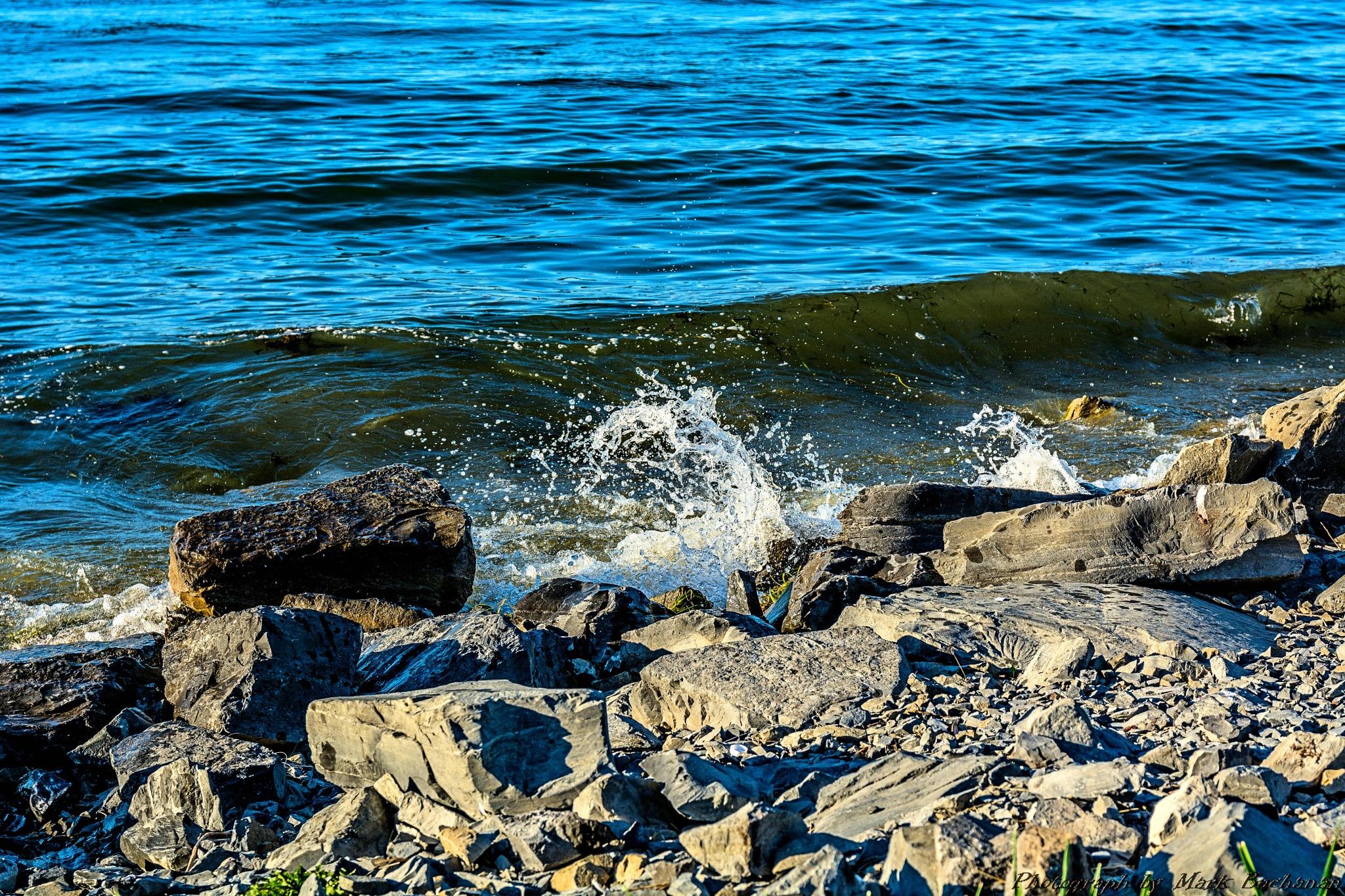 Splash #3 by Mark Buchanan