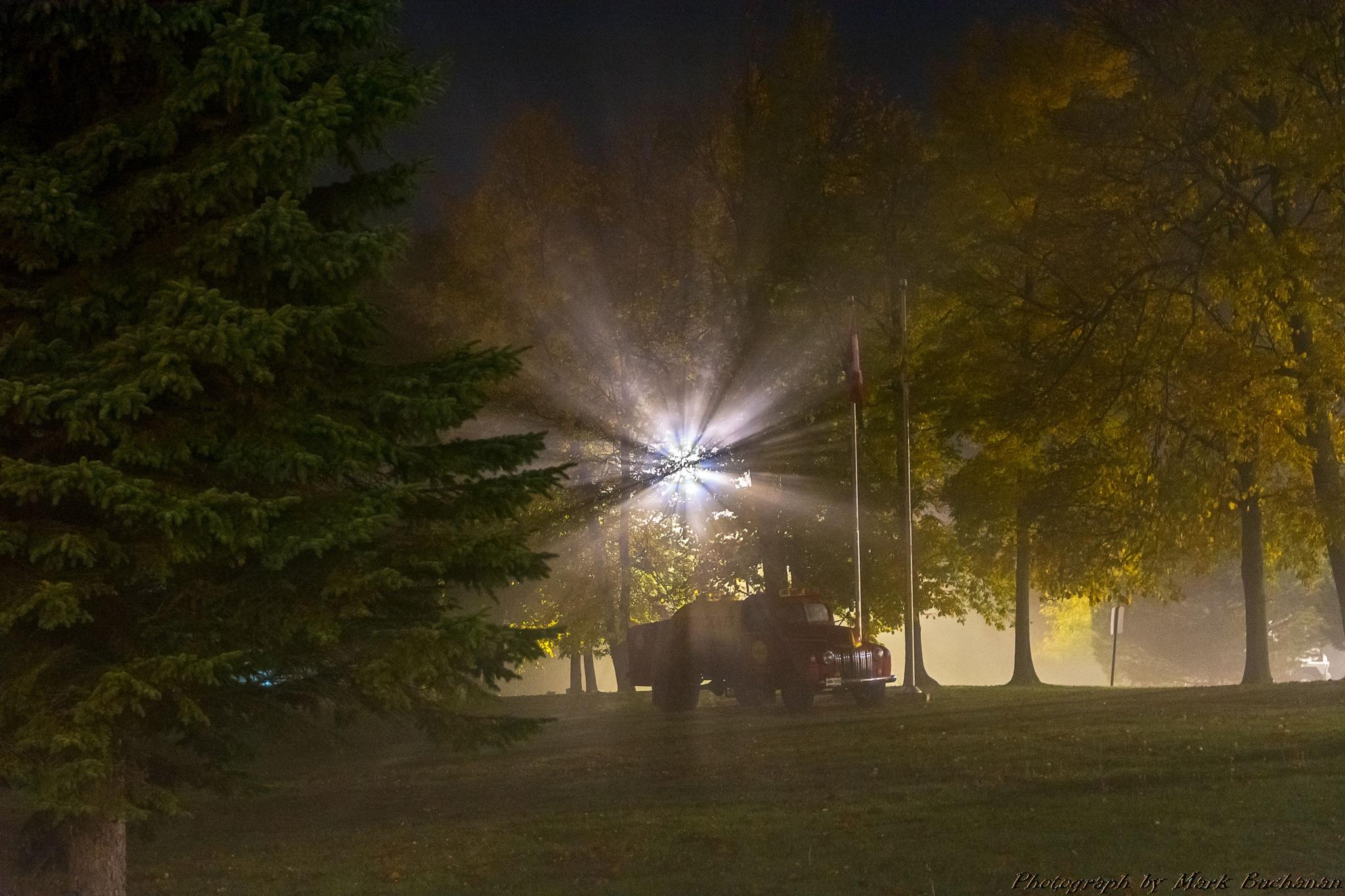 Foggy 1 by Mark Buchanan