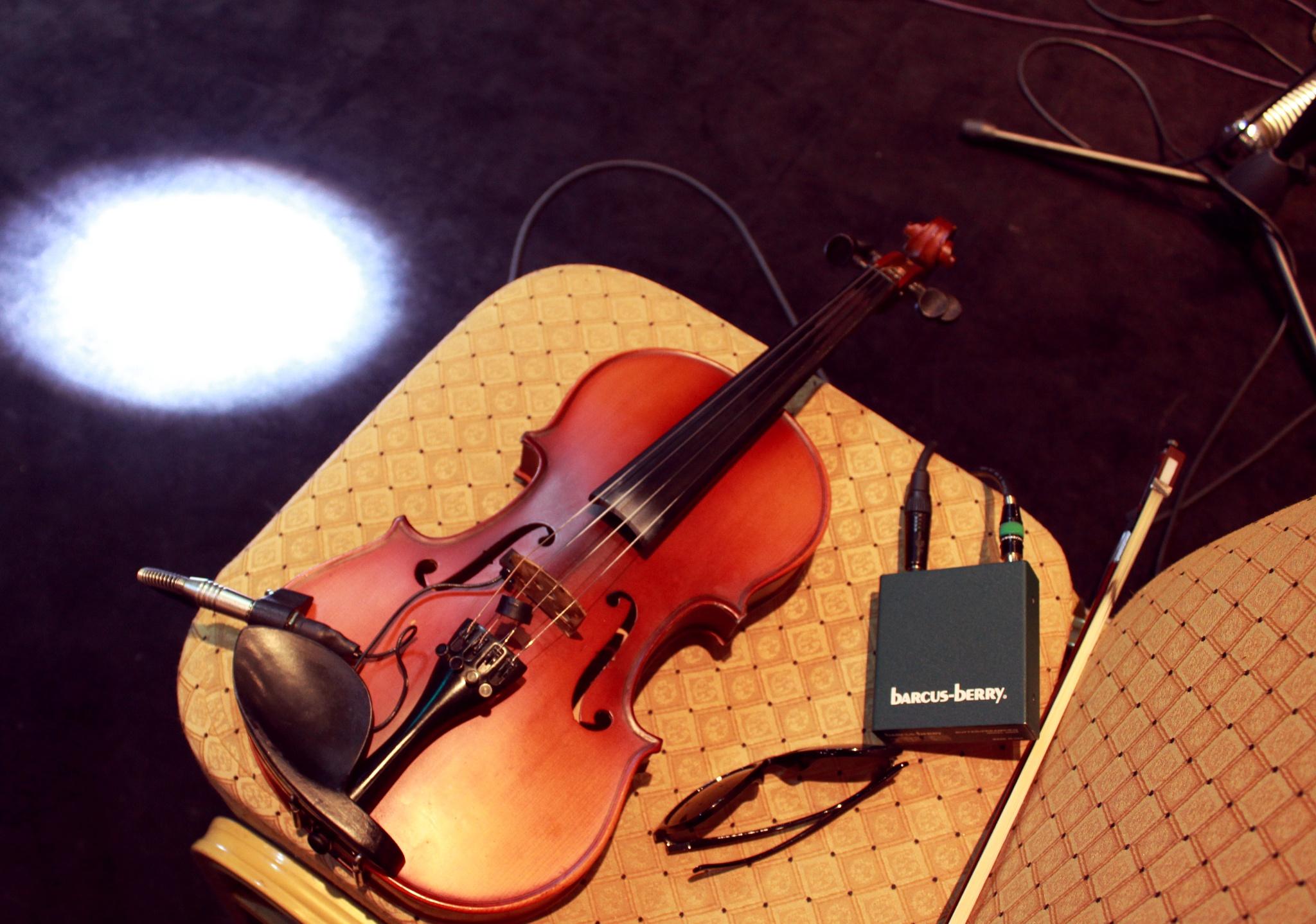 Violin by Aziz Jon Ochilov