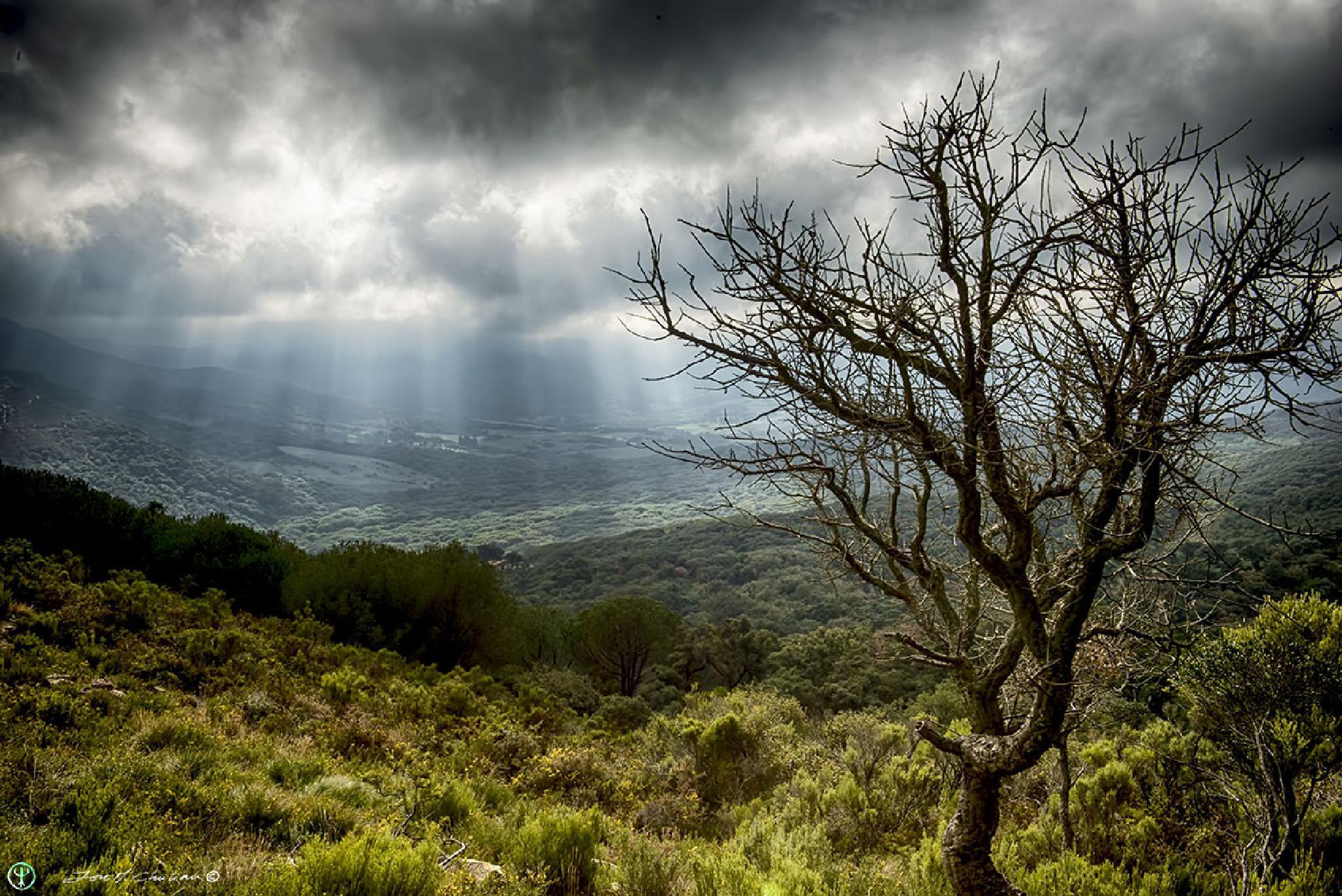 Dawning in the valley Ojen by jmchuliancesar