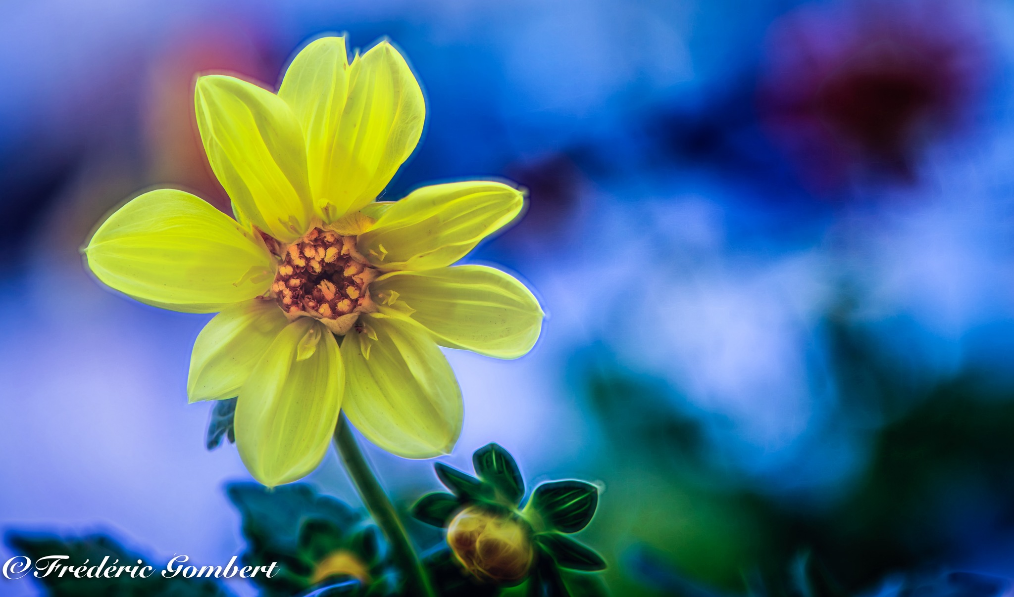 near the port by Frederic Gombert