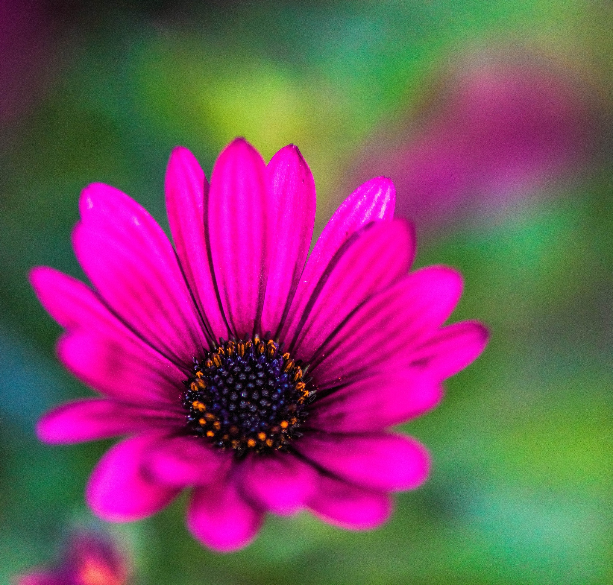 The other eye... by Frederic Gombert
