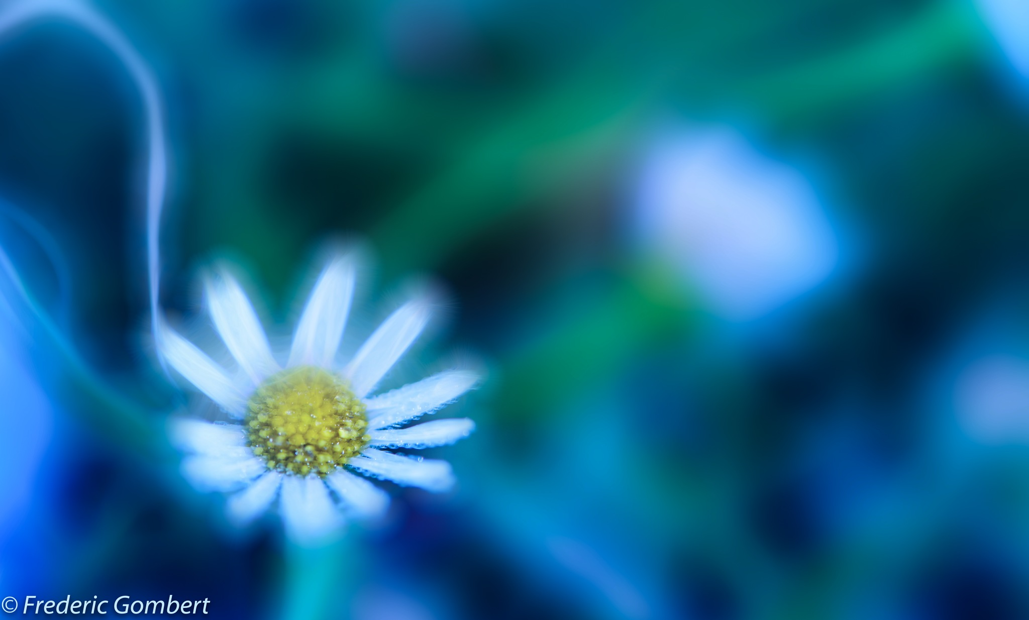 doubt by Frederic Gombert